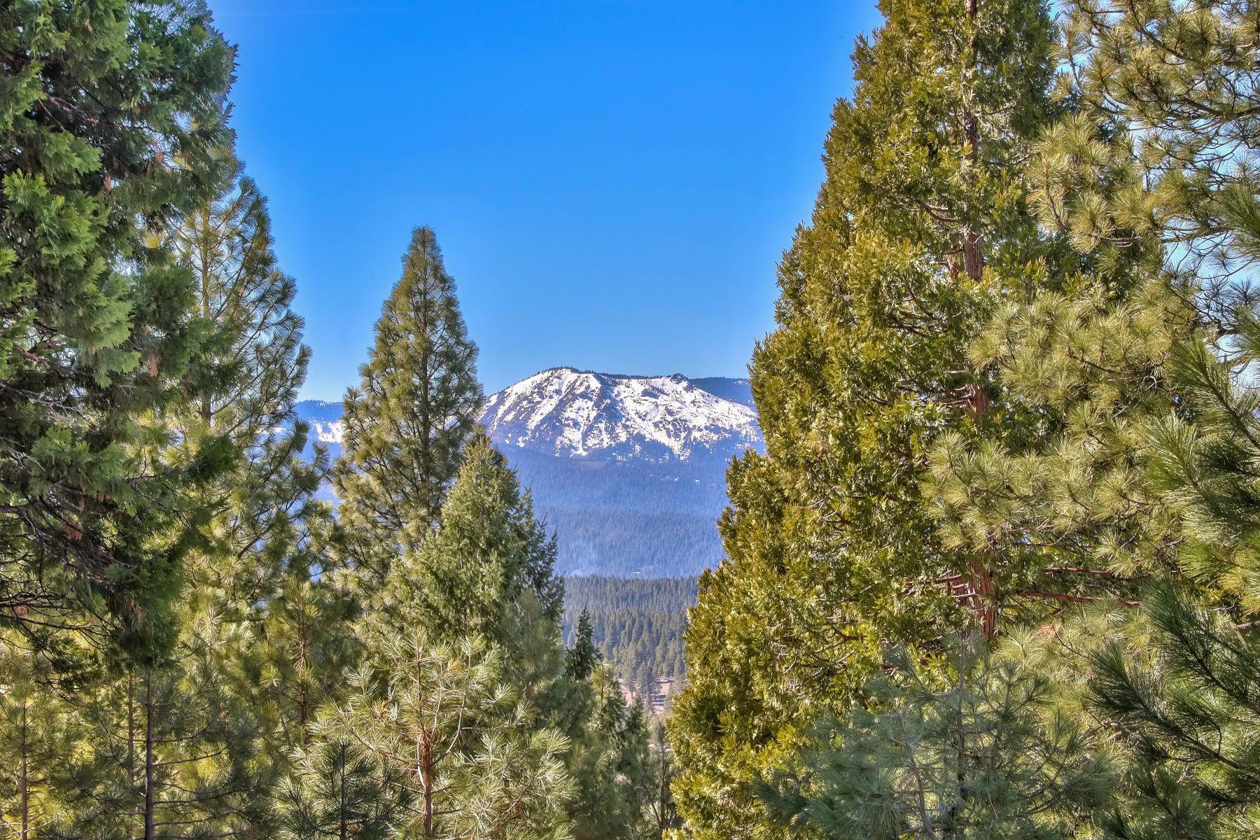 Additional photo for property listing at 1377 Startop Portola 96122 1377 Startop 波托拉, 加利福尼亚州 96122 美国