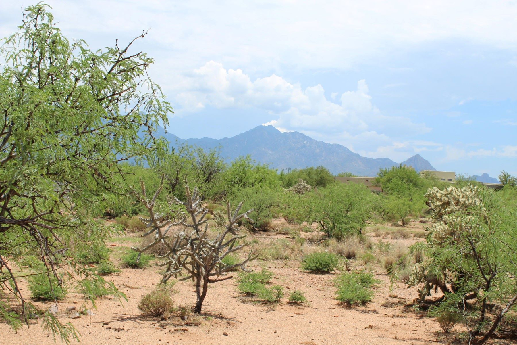 Land for Active at Beautiful 1.26 Acre Home Site 374 E Corte Tierra Morena Green Valley, Arizona 85614 United States