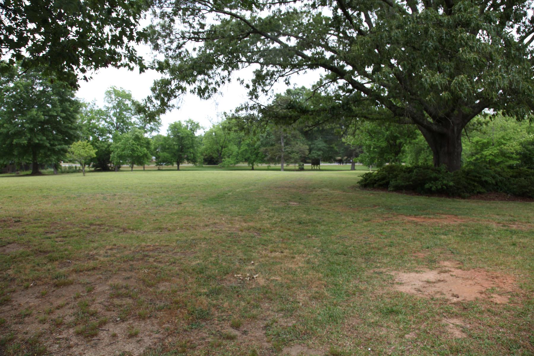 Additional photo for property listing at 8.62 Acre Commerical Development Corner 65 Salem Circle Covington, Georgia 30014 United States