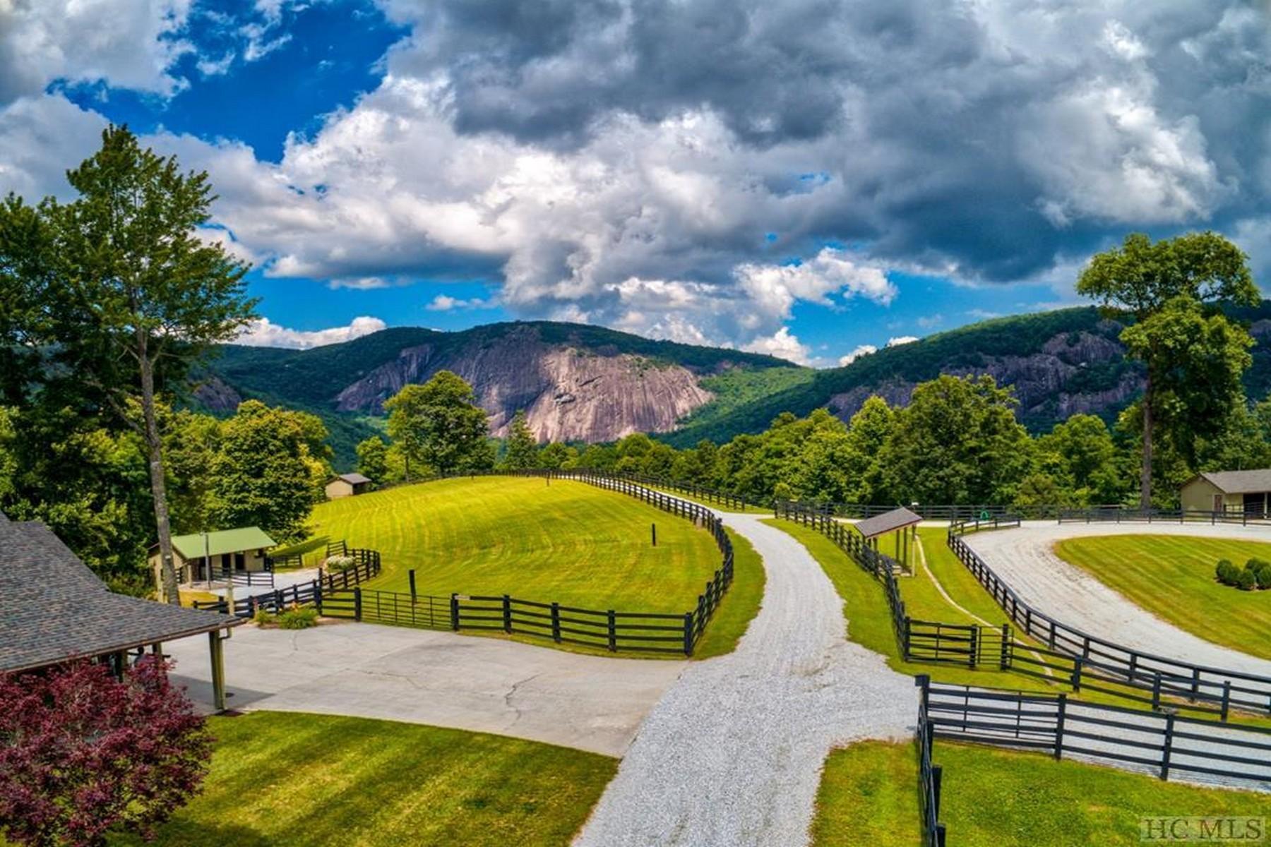 Single Family Homes for Sale at 160 Down Ridge Road Glenville, North Carolina 28736 United States