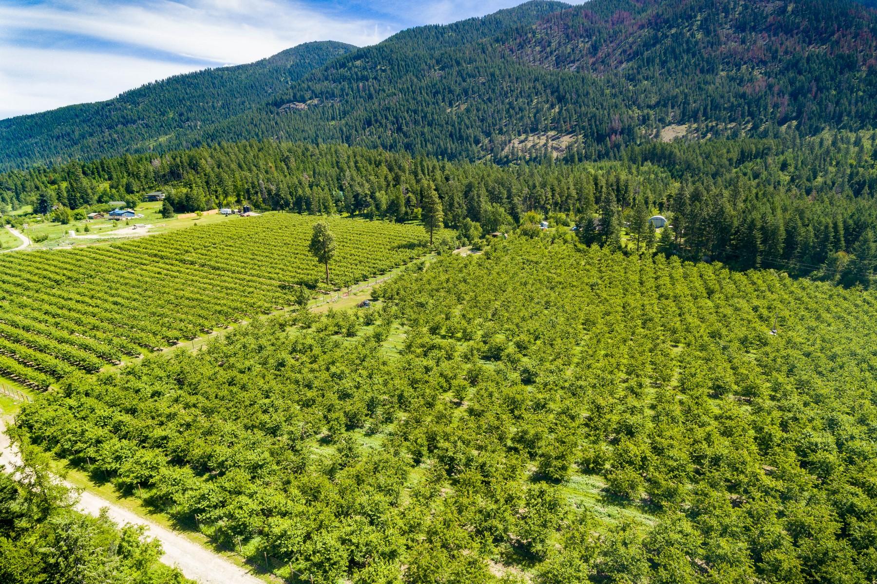 Granjas / Hacienda / Platanción por un Venta en 26366 Bear Hollow Polson, Montana 59860 Estados Unidos