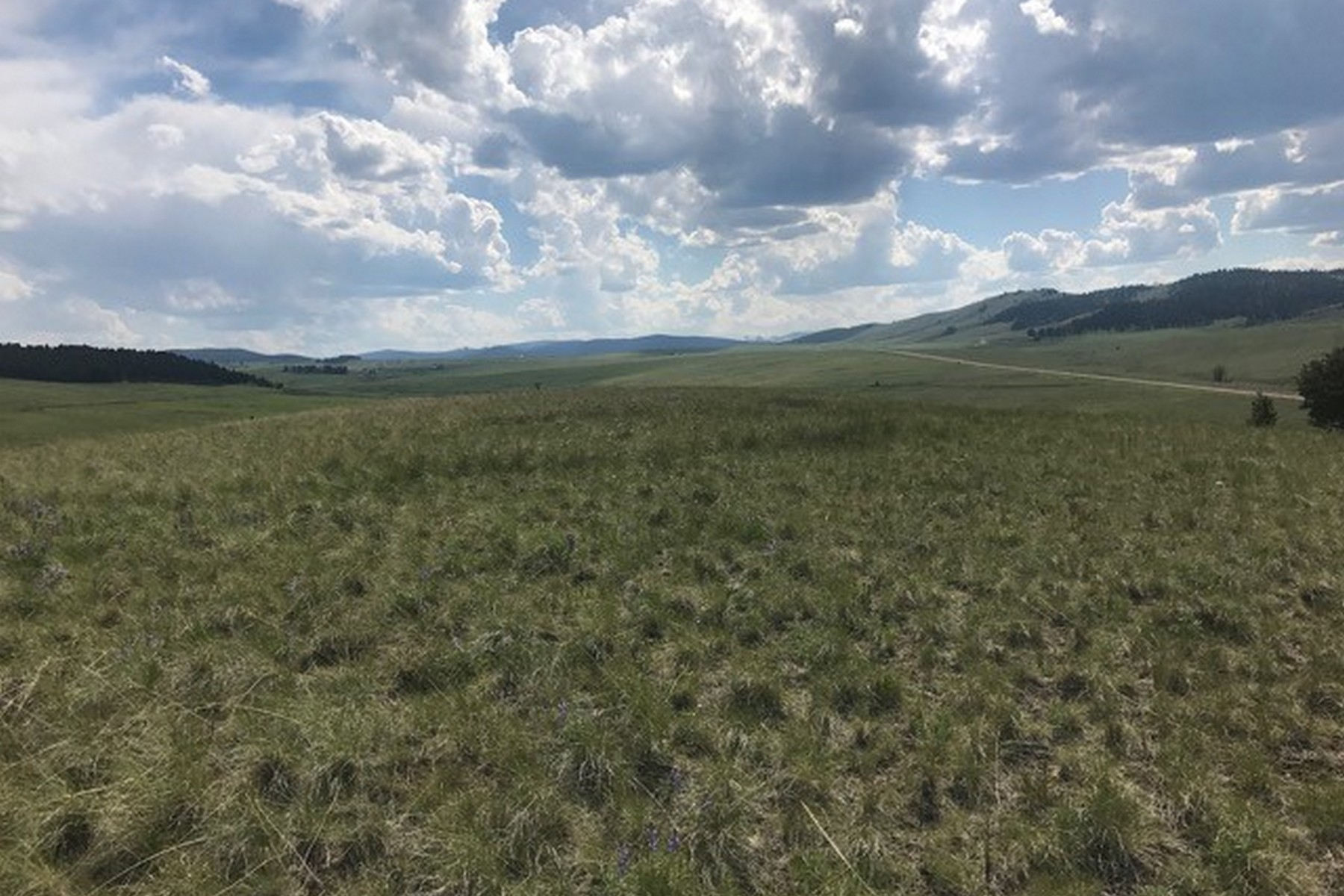 Additional photo for property listing at Trout Creek Ranch , Philipsburg, MT 59858  Philipsburg, Montana 59858 United States