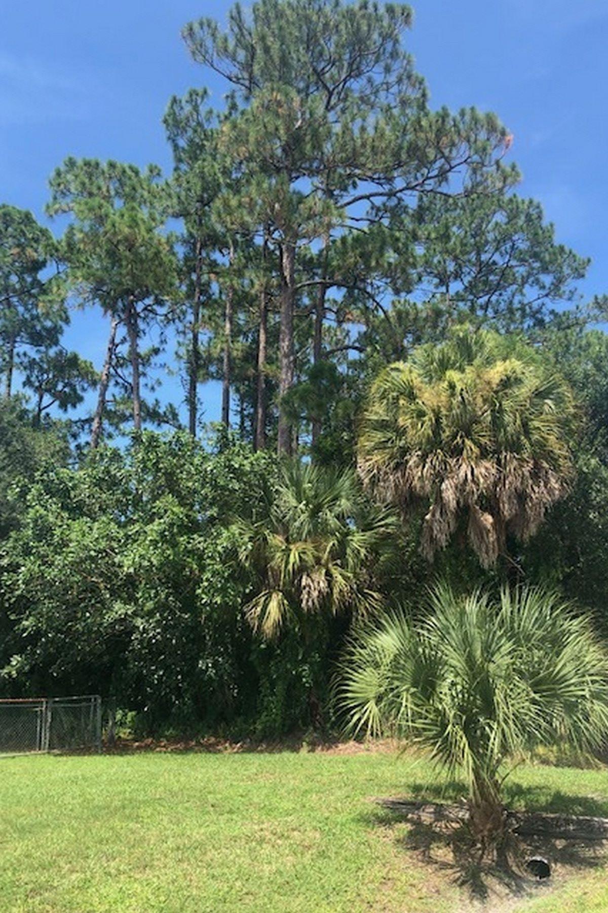土地,用地 为 销售 在 Great Spot for Your Country Paradise! 6126 7th Street 维罗海滩, 佛罗里达州 32968 美国