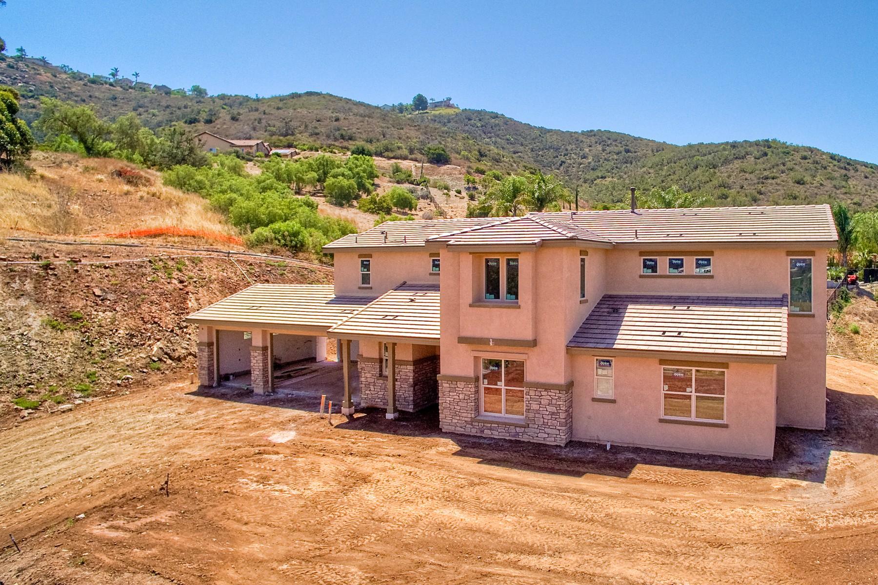 一戸建て のために 売買 アット 1575 Rogers Ct 1575 Rogers Court San Marcos, カリフォルニア 92069 アメリカ合衆国