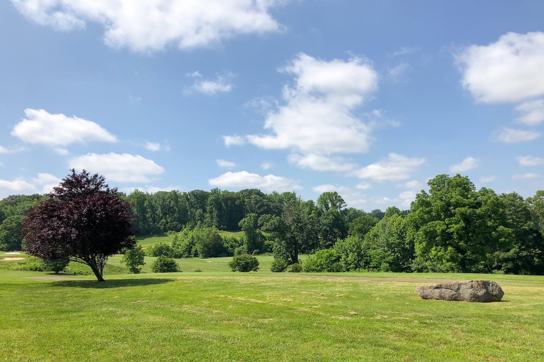 Additional photo for property listing at Poplar Grove Golf Club 129 Tavern Lane Amherst, Virginia 24521 United States