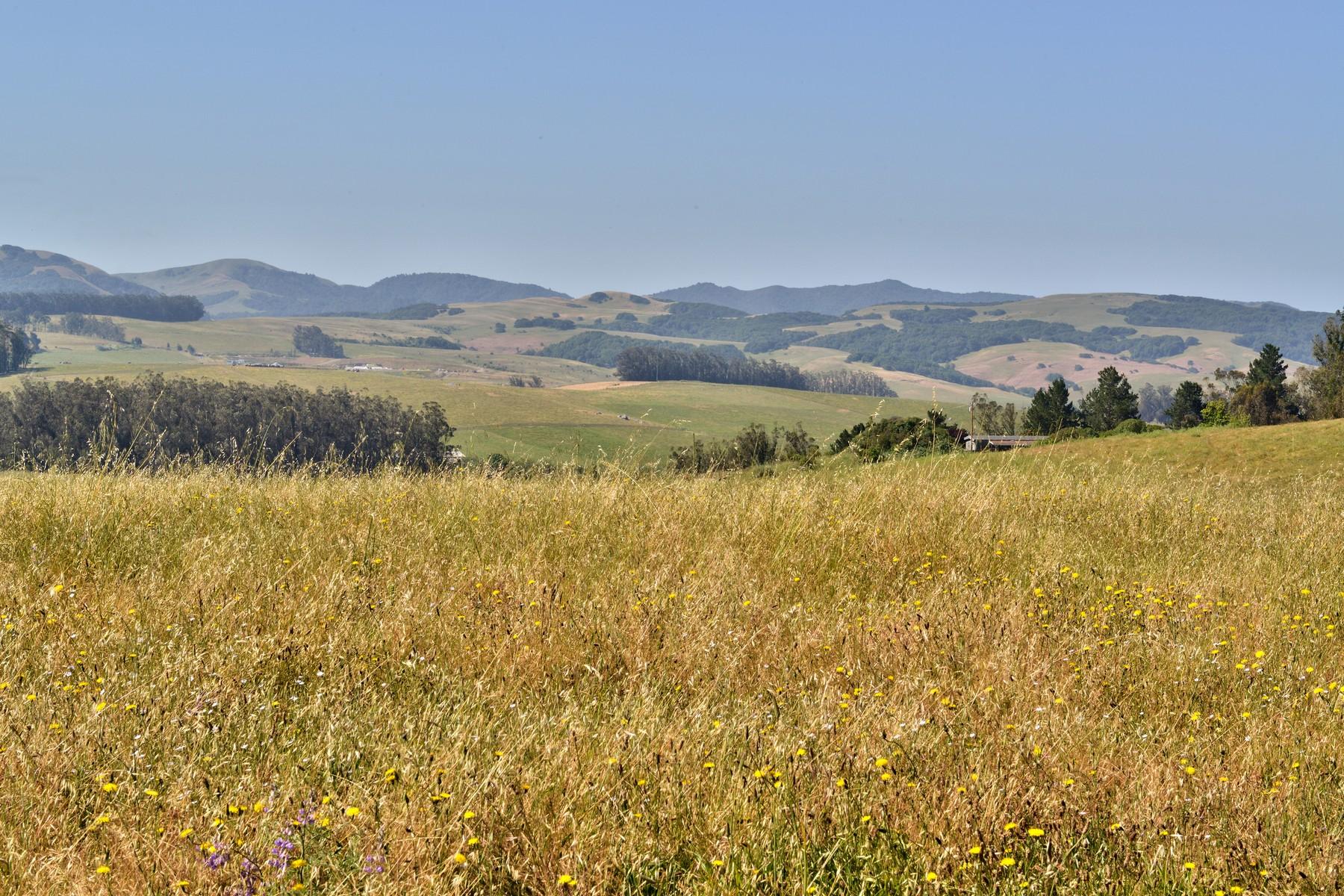 Additional photo for property listing at 6484 Bodega Avenue  Petaluma, California 94952 United States