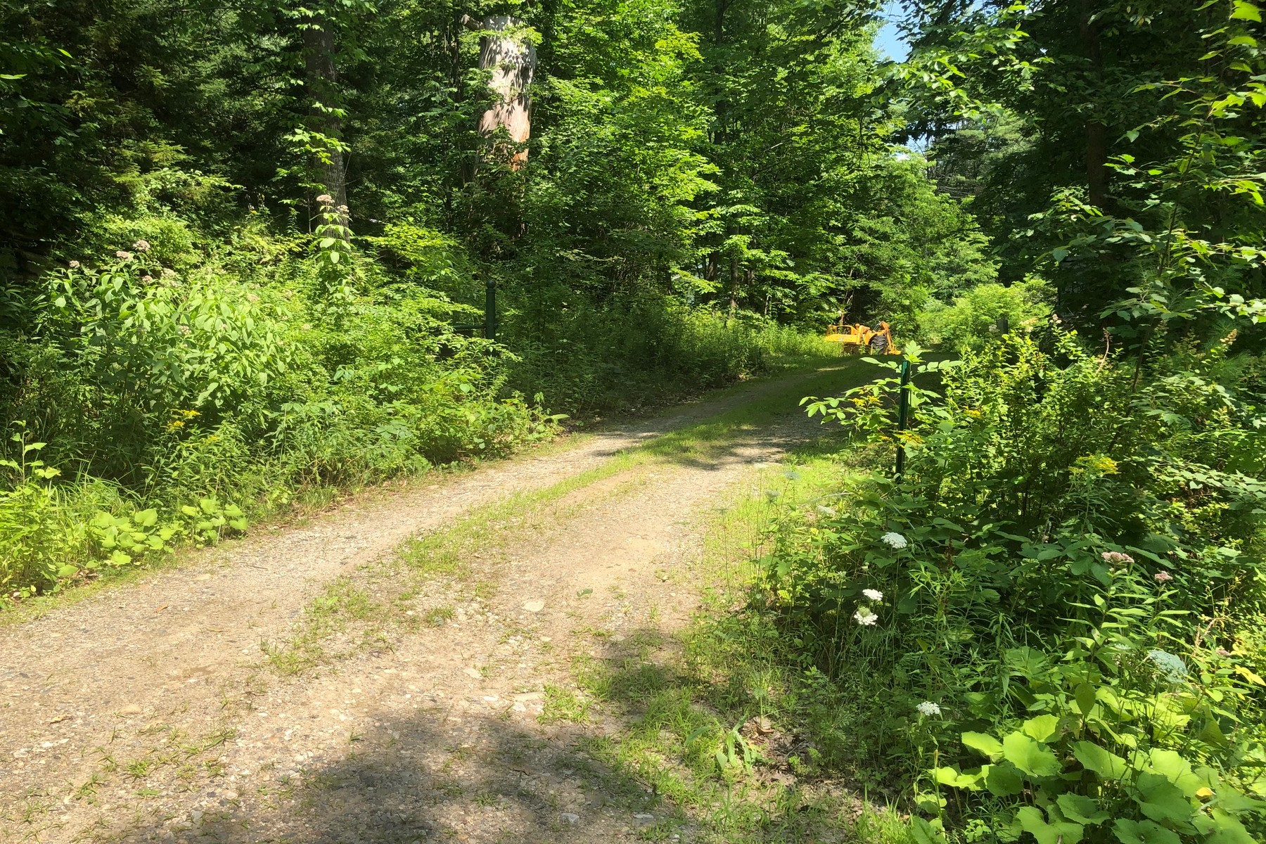 Land for Sale at Water Street Jamaica, Vermont 05343 United States