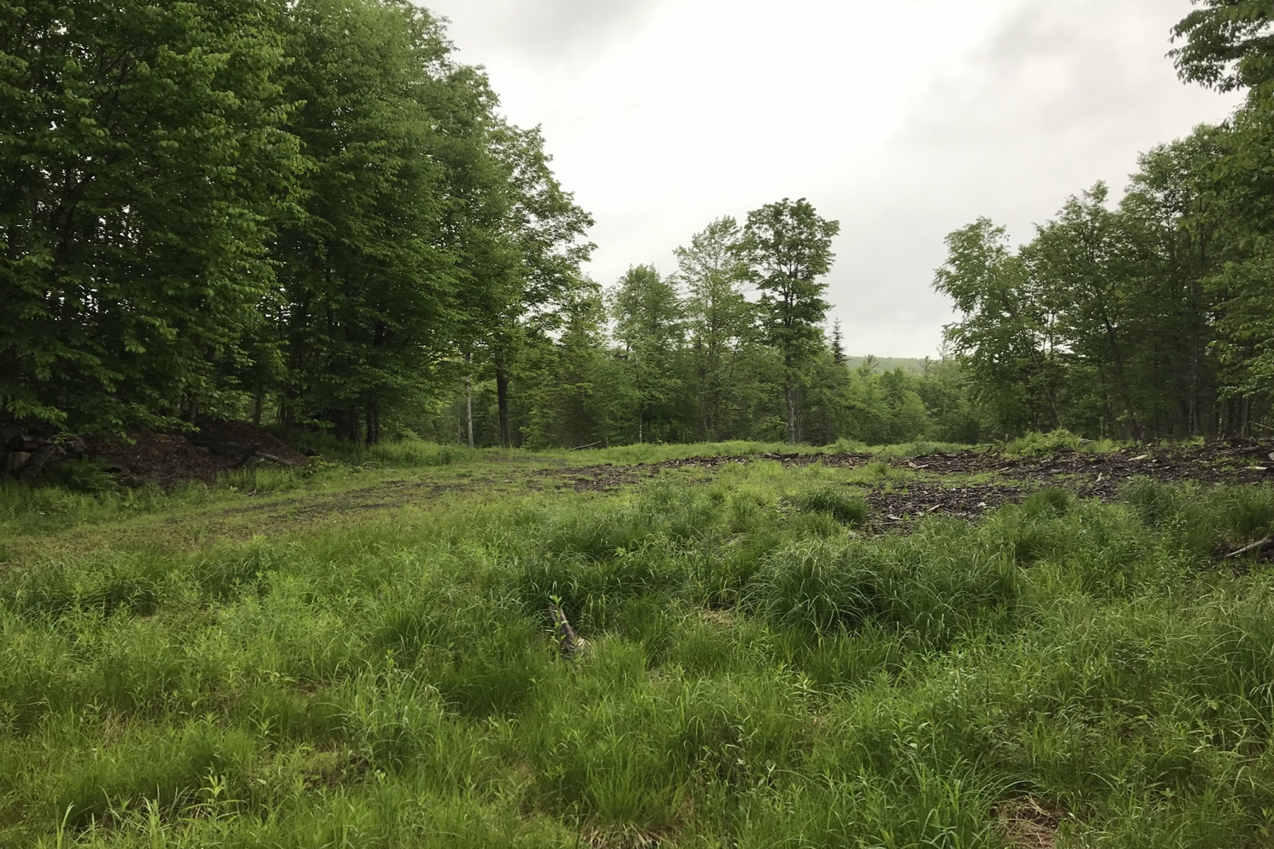 Land for Sale at Santanoni Over Hudson 33 NYS Rt 28N Newcomb, New York 12852 United States