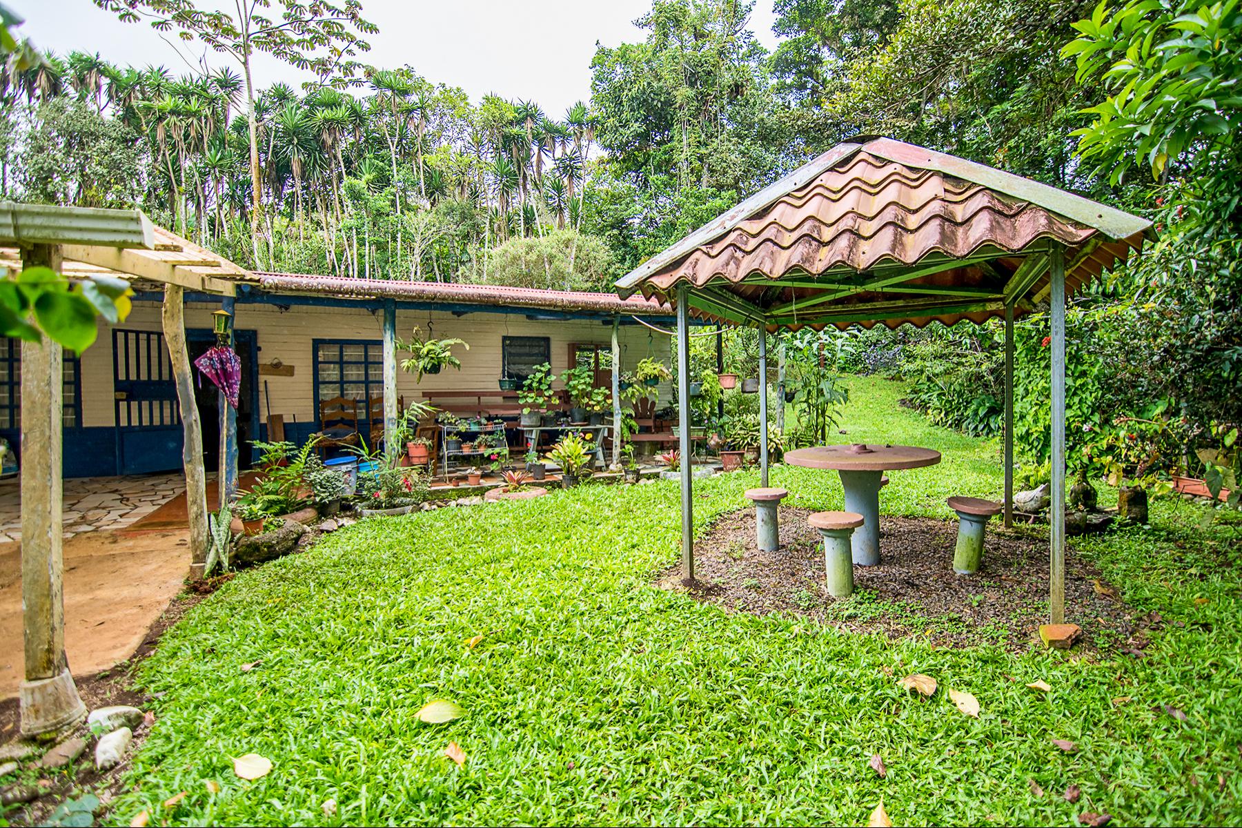 Terreno por un Venta en San Ramón Finca Café y Río Other Alajuela, Alajuela Costa Rica