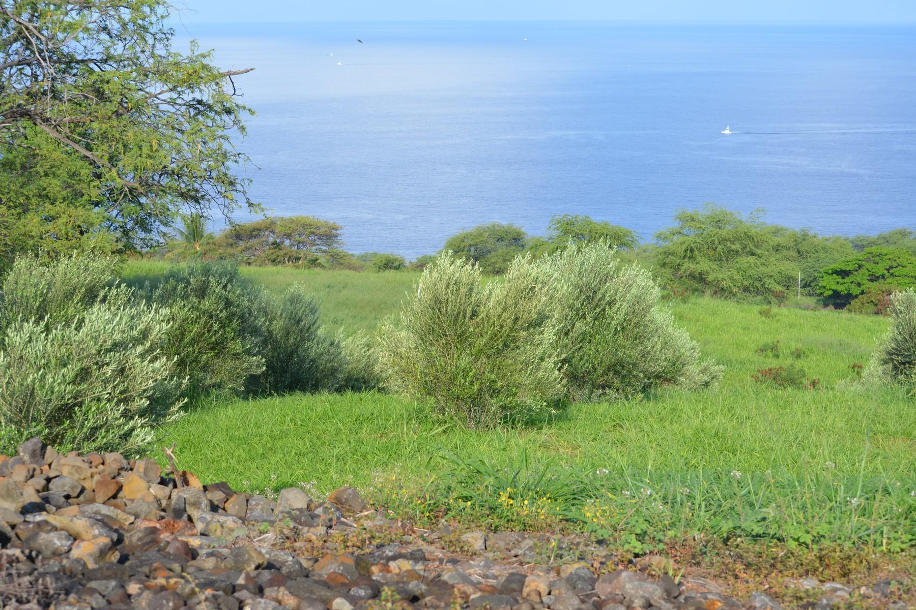أراضي للـ Sale في Hokuli'a 81-6541 Mamaka Pl, Kealakekua, Hawaii, 96750 United States
