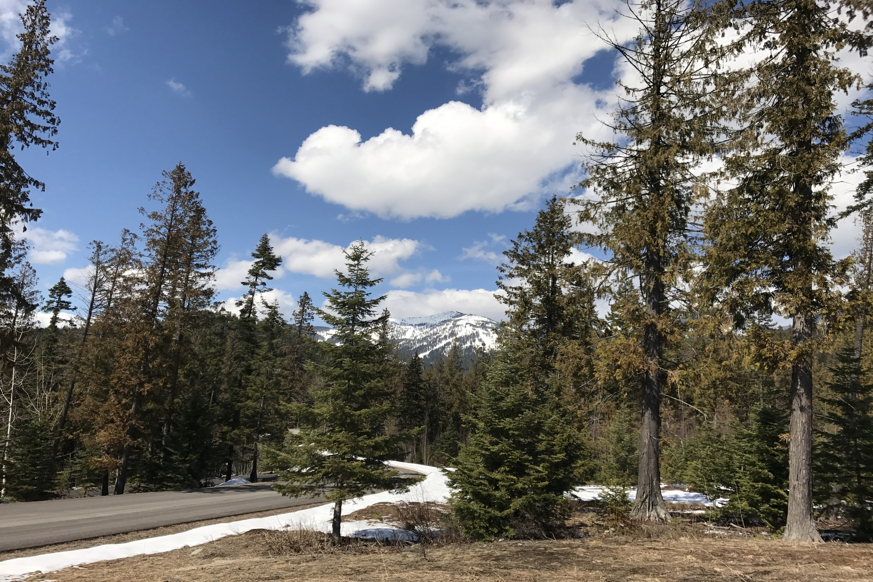 Additional photo for property listing at 301 Sugarbowl Cir, Lot 224, Whitefish, MT 59937 301  Sugarbowl Cir Lot 224 Whitefish, Montana 59937 United States