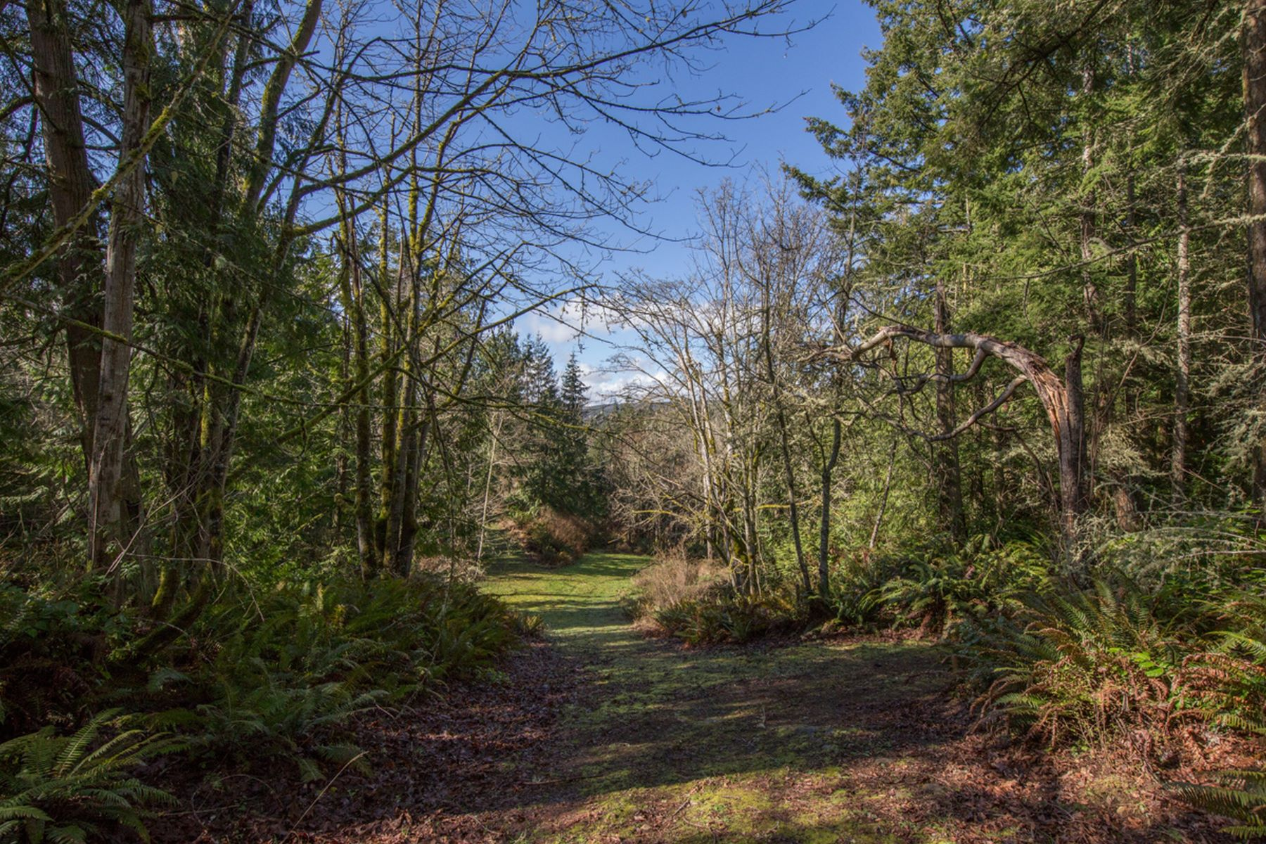 Additional photo for property listing at Bayview Dr, Port Ludlow N Bayview Dr Port Ludlow, Washington 98365 United States