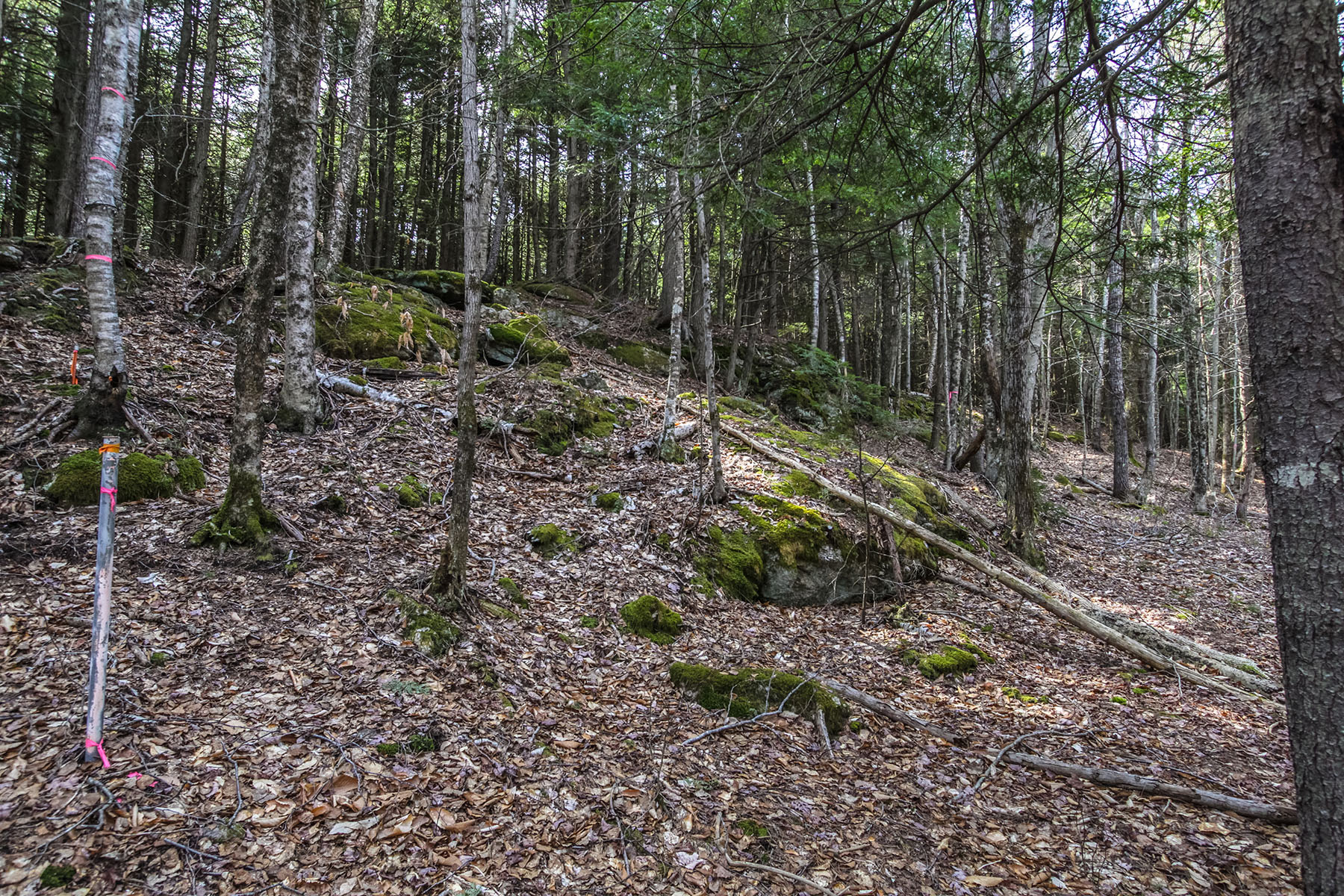 Land for Sale at 0 Collinsbrook Road 0 Collinsbrook Road Brunswick, Maine 04011 United States