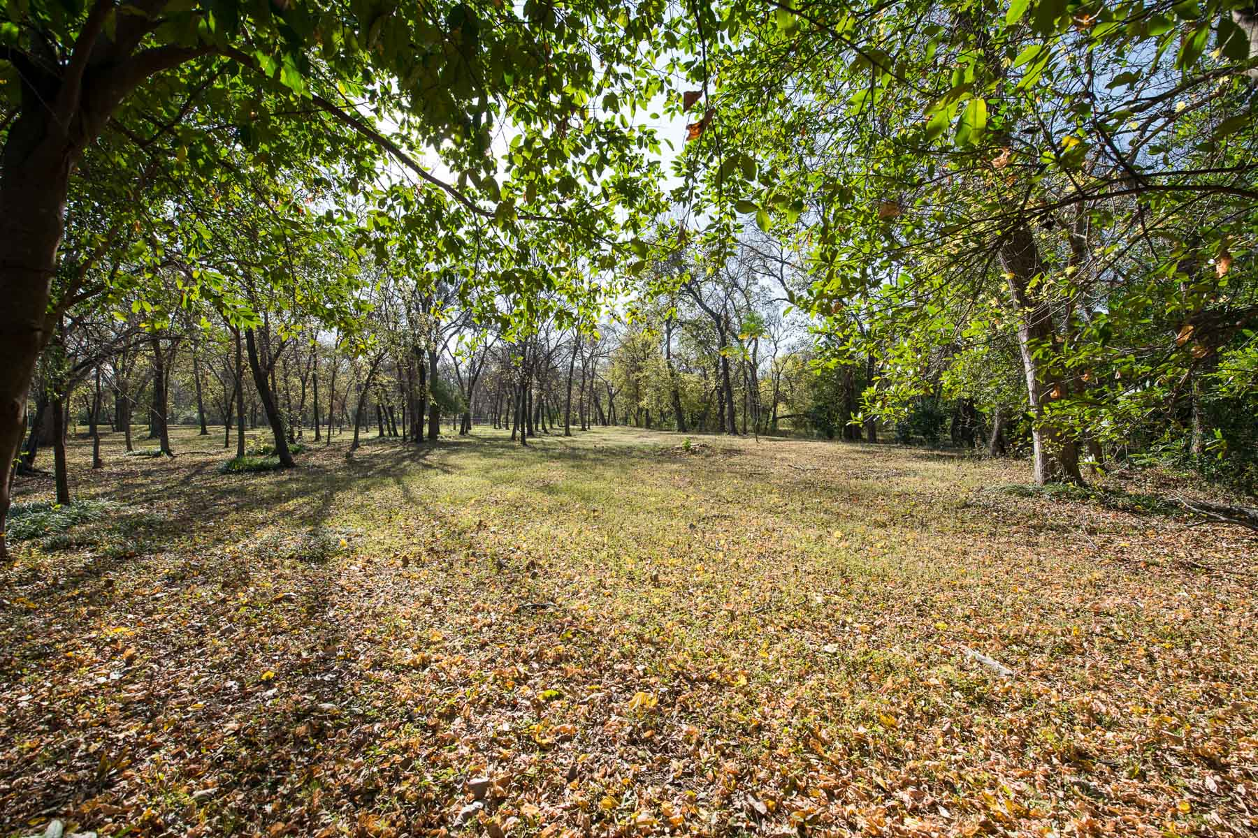 Terreno per Vendita alle ore Over 11 heavily treed acres in the heart of Colleyville 1901 Oak Knoll Drive, Colleyville, Texas, 76034 Stati Uniti