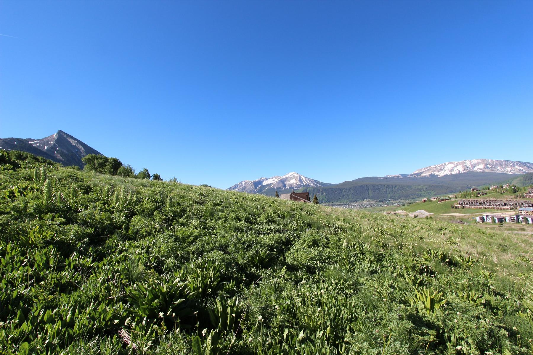 Propiedad en venta Mount Crested Butte