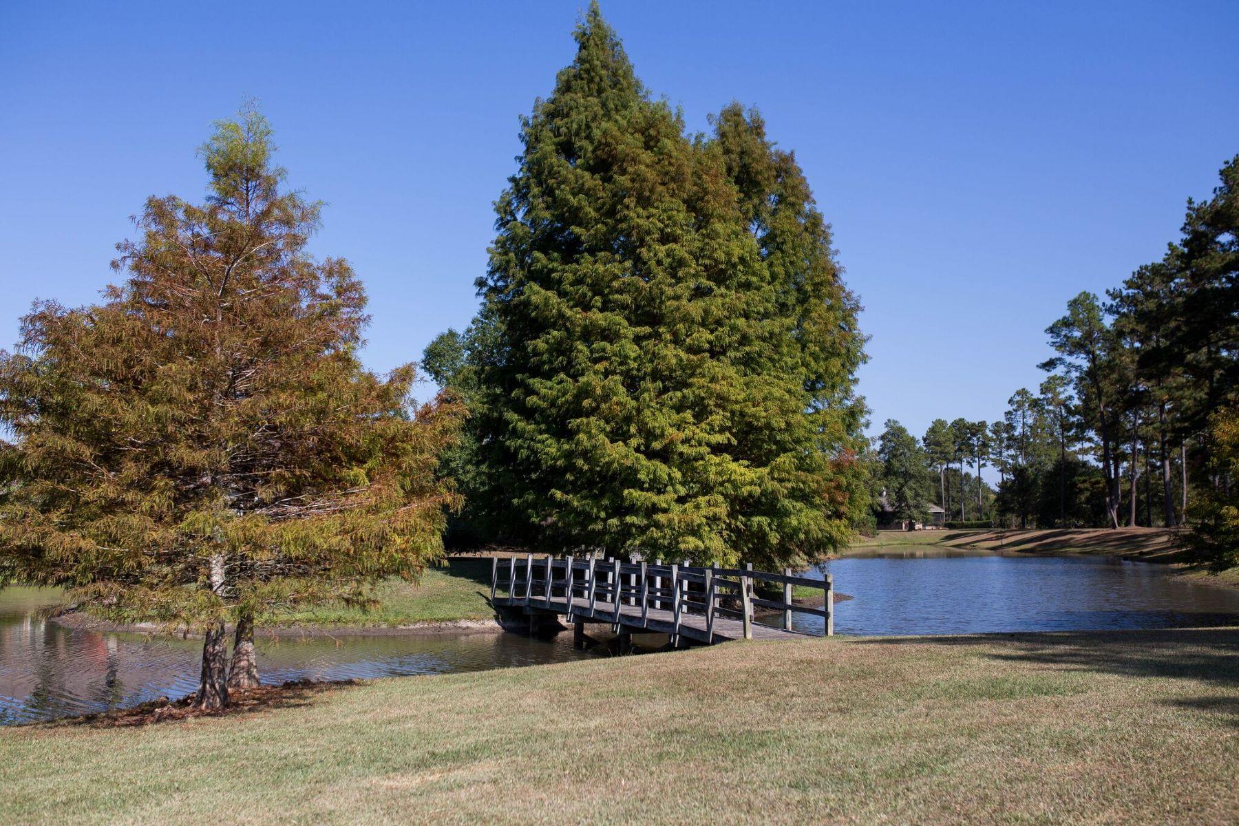 Terreno por un Venta en Camphill Drive Abita Springs, Louisiana, 70420 Estados Unidos
