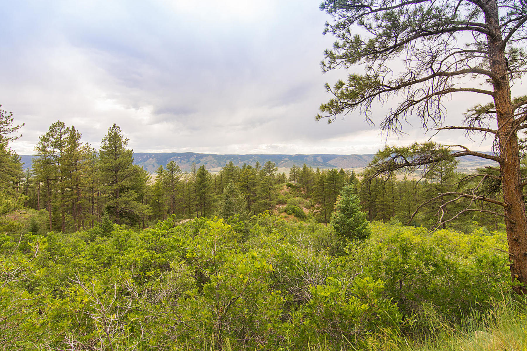 This is a rare opportunity to own a 35- acre piece of Dawson Butte with views of 5080 S Perry Park Rd Sedalia, Colorado 80135 United States