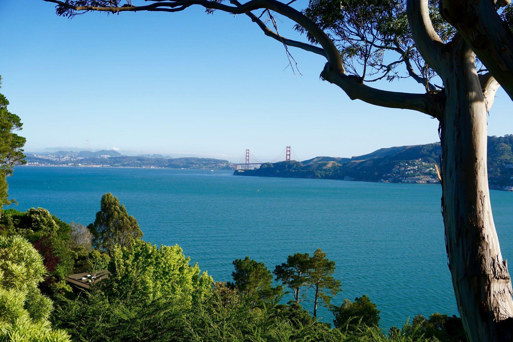 Casa para uma família para Venda às Belvedere Home with Stunning Golden Gate Bridge Views 29 Eucalyptus Road Belvedere, Califórnia, 94920 Estados Unidos