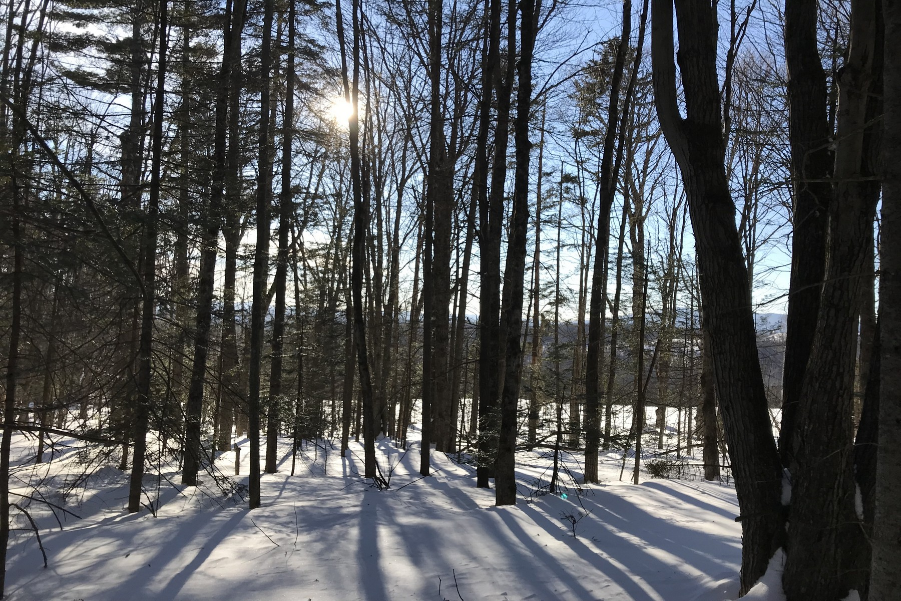 Land for Sale at Views and Permits on Quiet Road Holden Hill Rd Lot B Weston, Vermont 05161 United States
