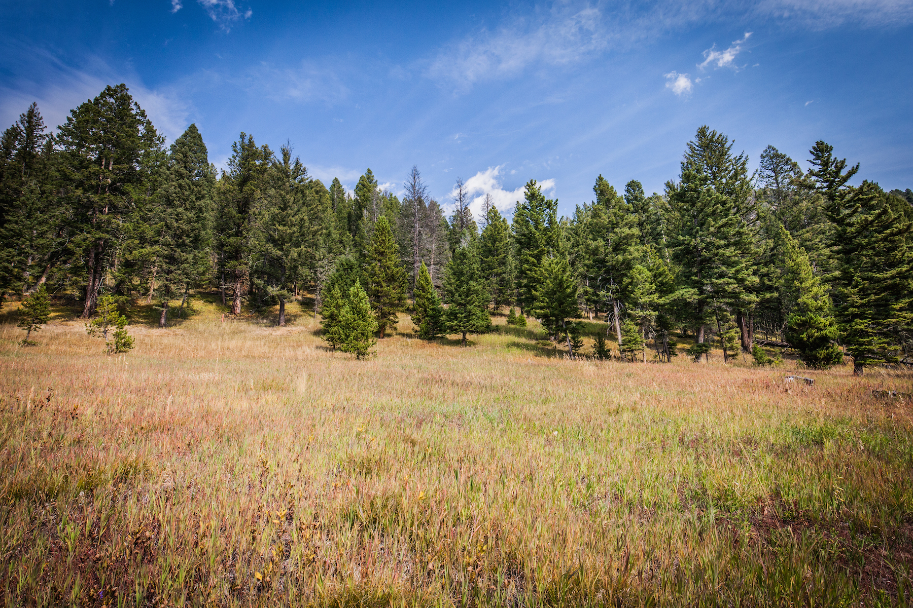 Land for Sale at Upper Chief Joseph Trail 1A-1 Lot 1A-1 Upper Chief Joseph Trail Big Sky, Montana, 59716 United States