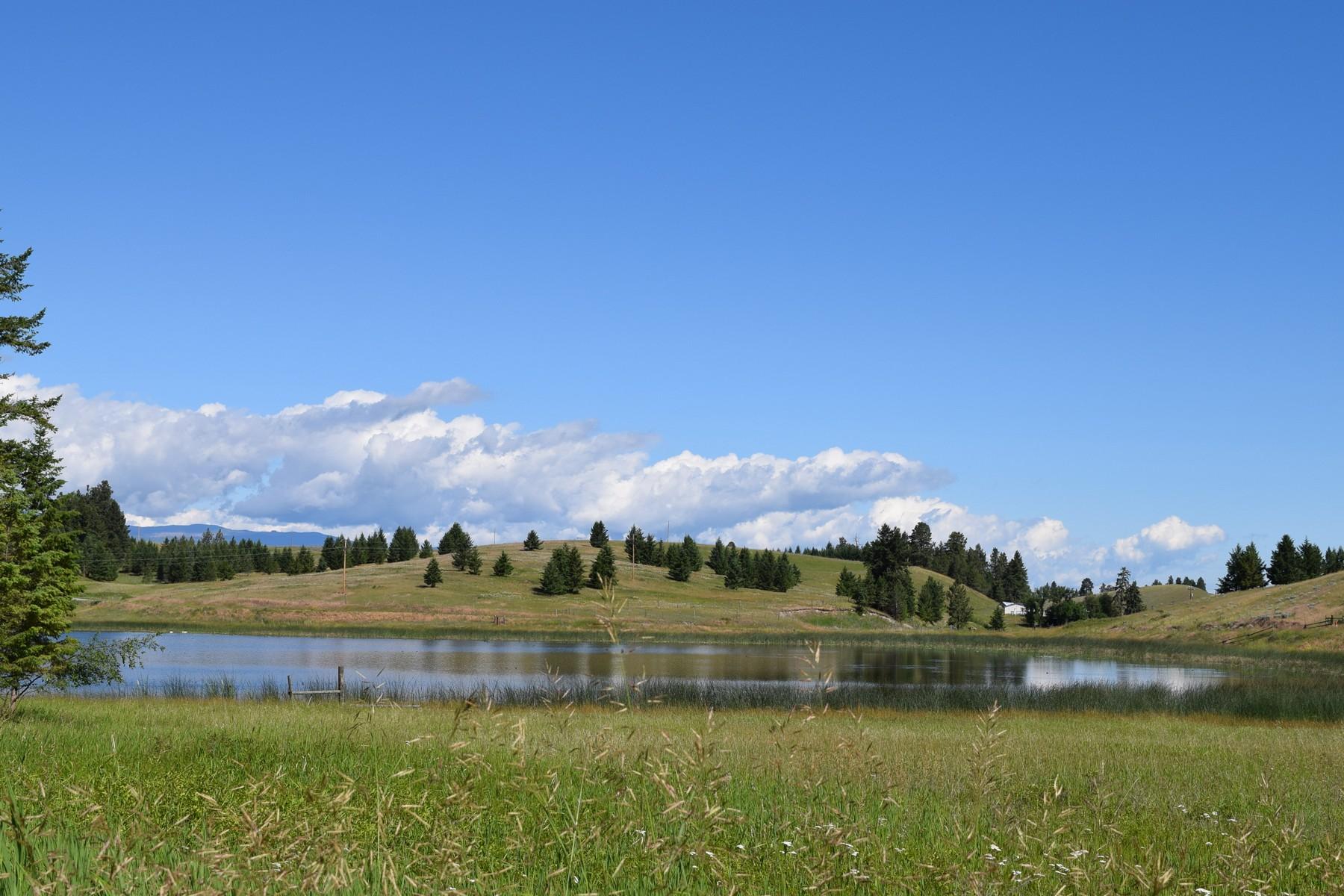 Land for Sale at Nhn Black Lake Road Eureka, Montana 59917 United States