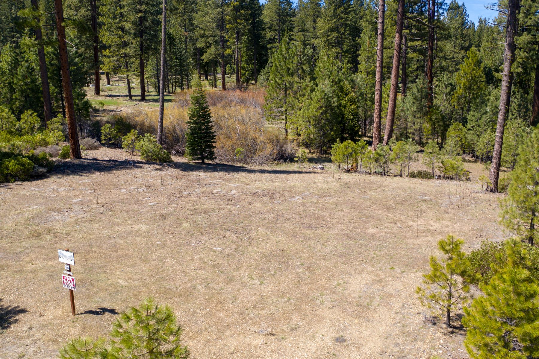 Additional photo for property listing at 510 Eureka Springs Drive, Blairsden, CA 96103 510 Eureka Springs Drive Blairsden, California 96103 United States