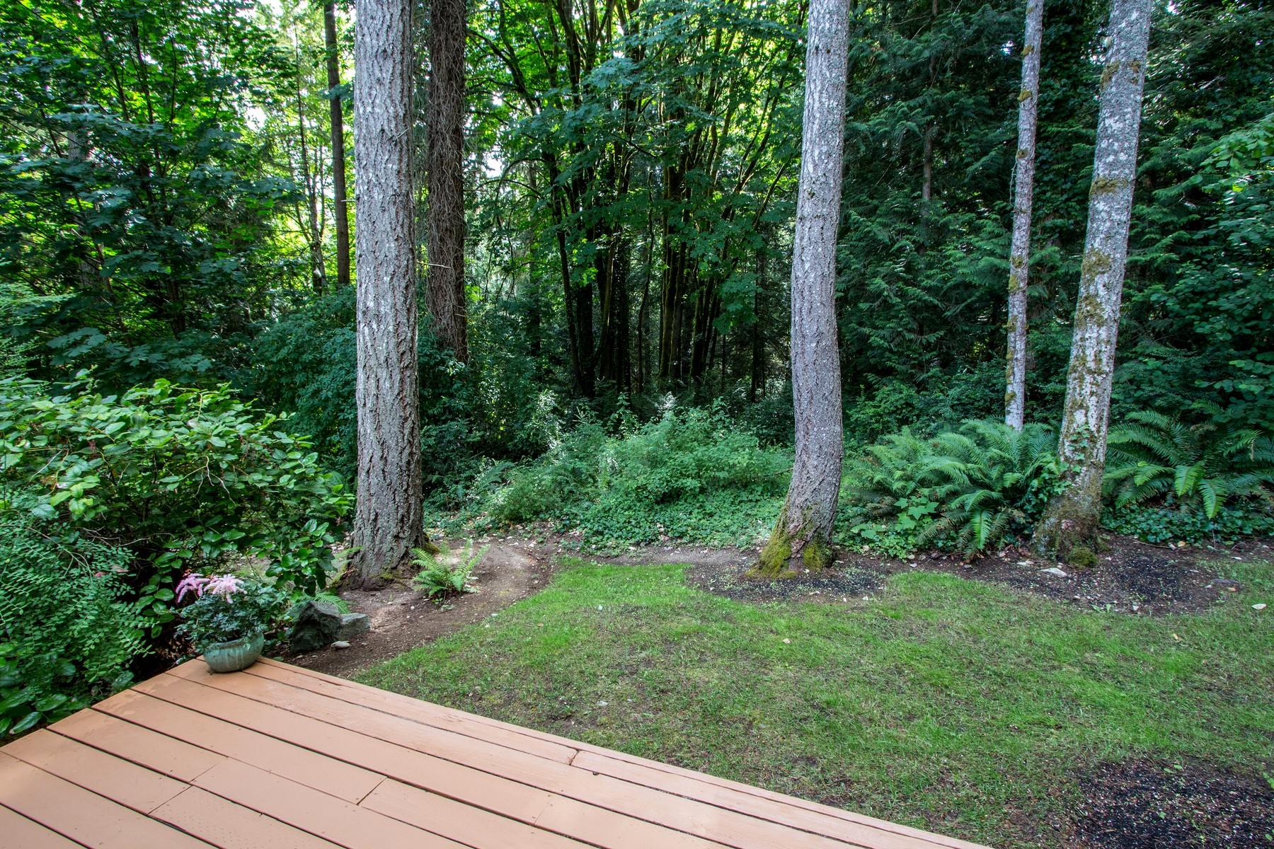Additional photo for property listing at Affordable Gem in Fletcher Bay 8480 NE Hansen Rd Bainbridge Island, Washington 98110 États-Unis