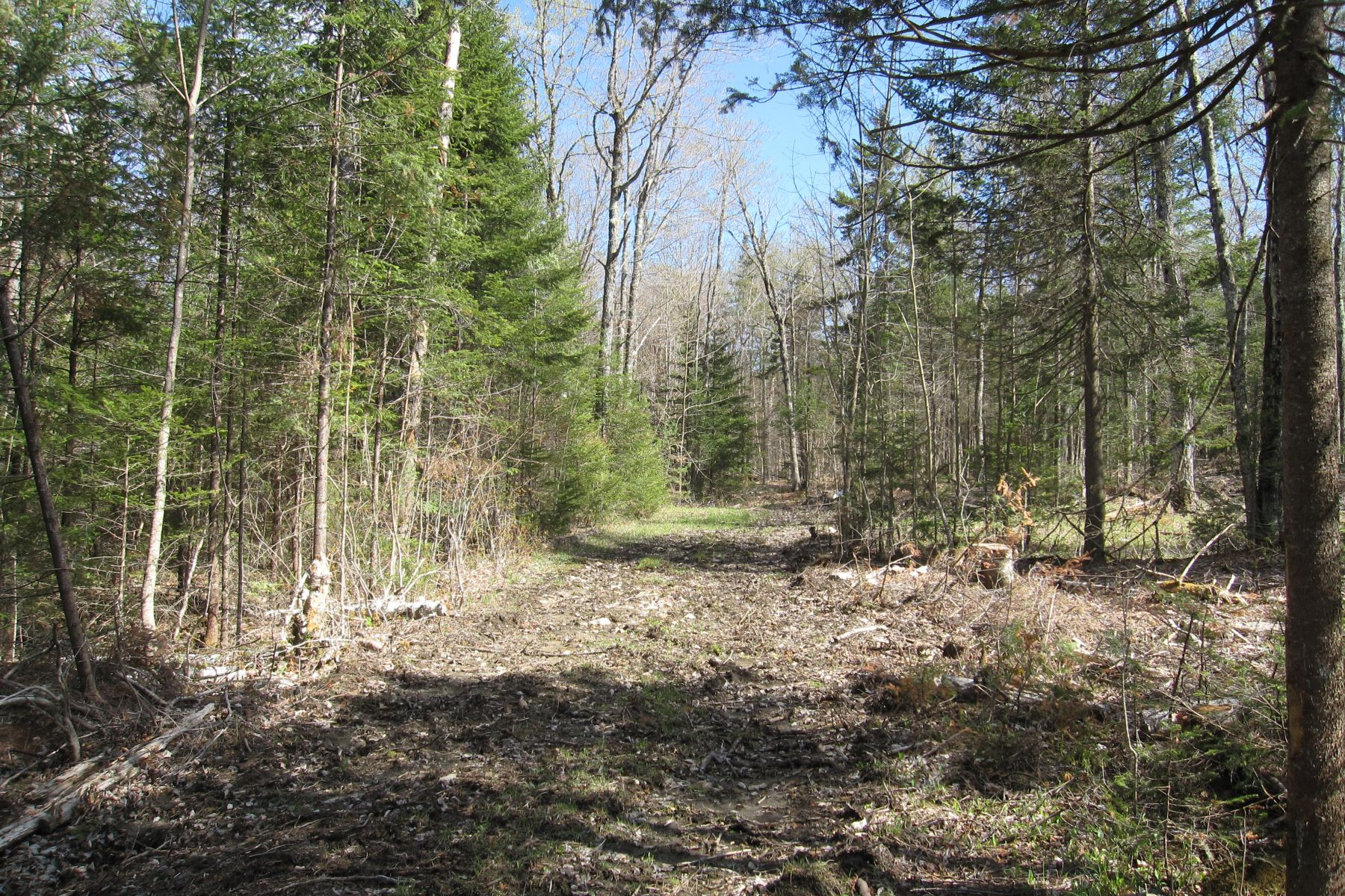 Land for Sale at Twenty Eight Acres in Groton 00A Scott Hwy Groton, Vermont 05046 United States