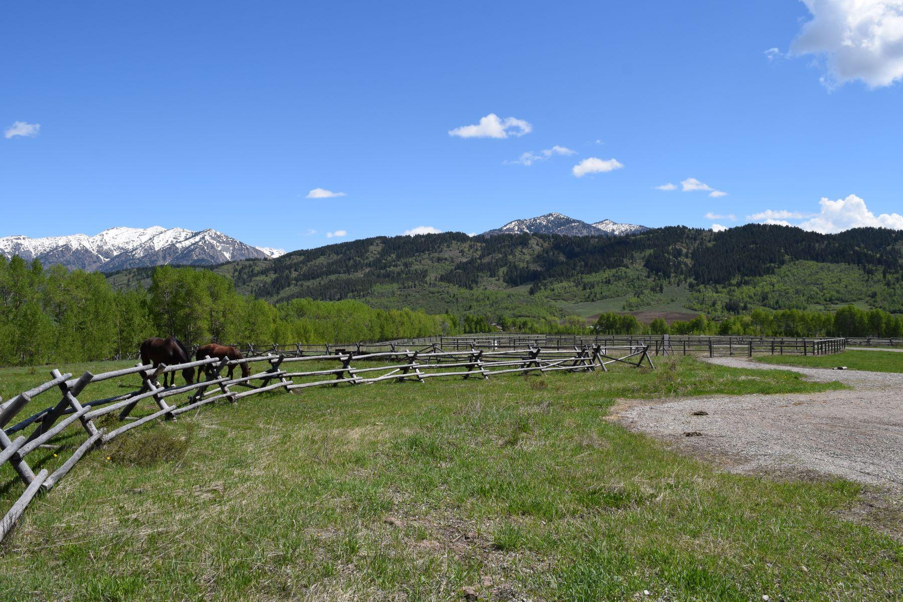 أراضي للـ Sale في Alpine, Wyoming 83128 United States