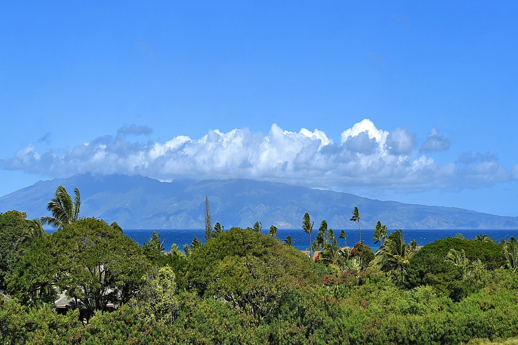 Land for Active at Ocean, Outer Island and Sunset Views are yours to enjoy! 308 Kahana Ridge Drive Kahana, Hawaii 96761 United States