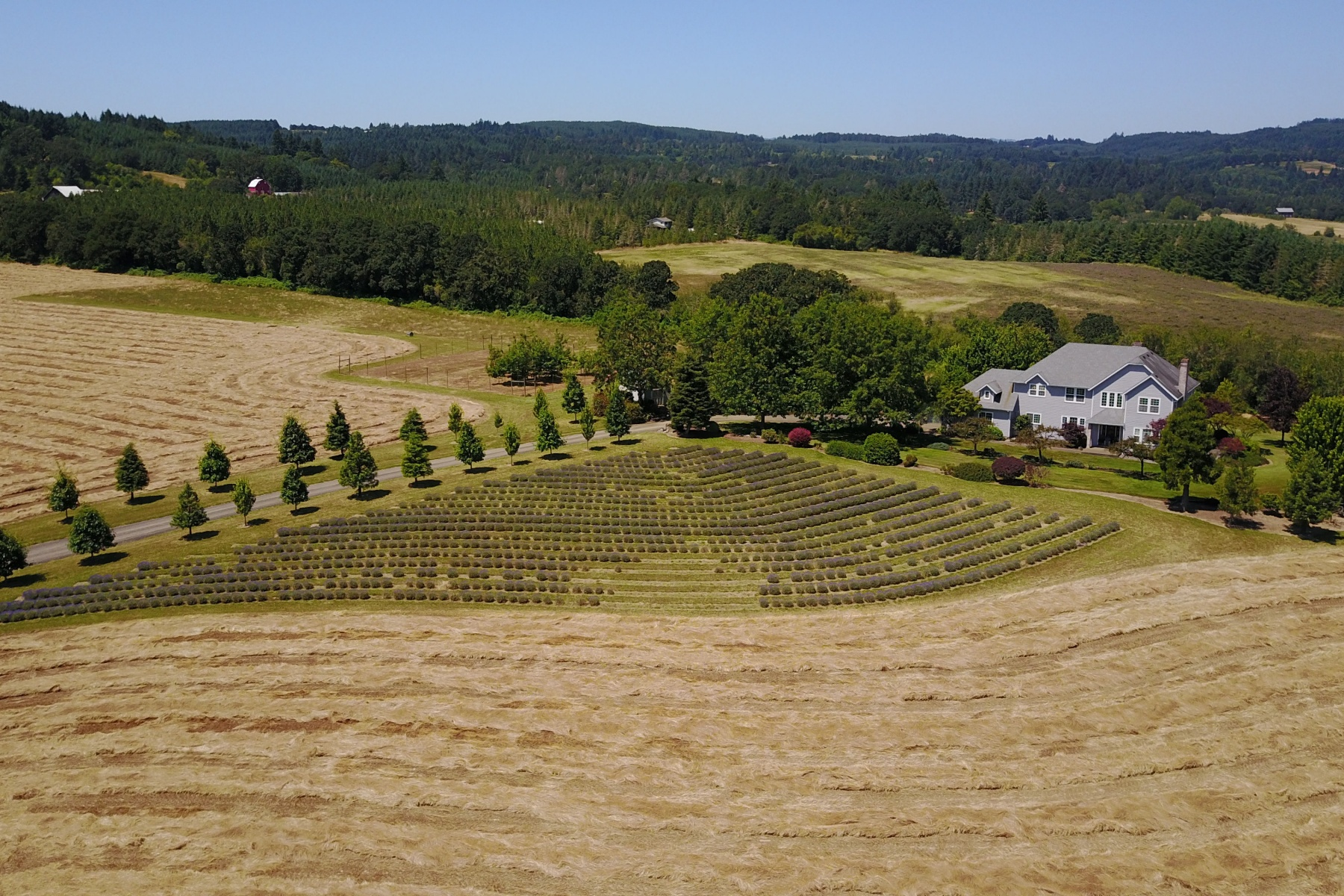 Single Family Homes για την Πώληση στο Beautiful Estate on 75 acres 11120 NW MOORES VALLEY RD, Yamhill, Ορεγκον 97148 Ηνωμένες Πολιτείες