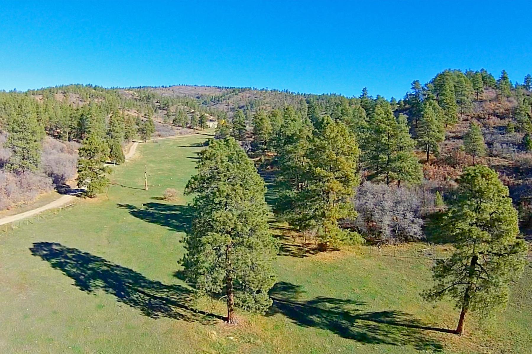 农场 / 牧场 / 种植园 为 销售 在 Elkhorn Ranch 7091 CR 228 贝菲尔德, 科罗拉多州 81122 美国