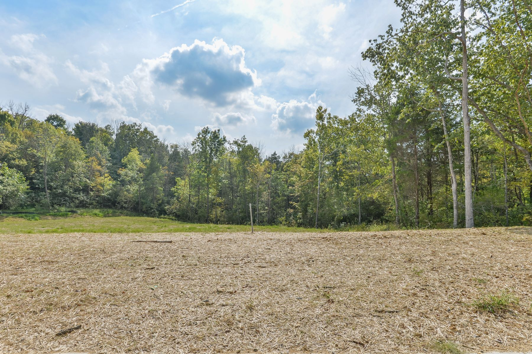 Land for Sale at 89 Shakes Creek Drive 89 Shakes Creek Drive Fisherville, Kentucky 40023 United States
