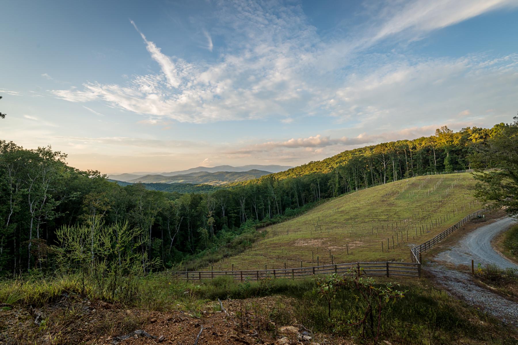 Οικόπεδο για την Πώληση στο Hard to Find 11 Acre Private Home Site With Vineyard Already Planted! 11 Old Burnt Mountain Ellijay, Γεωργια 30560 Ηνωμενεσ Πολιτειεσ