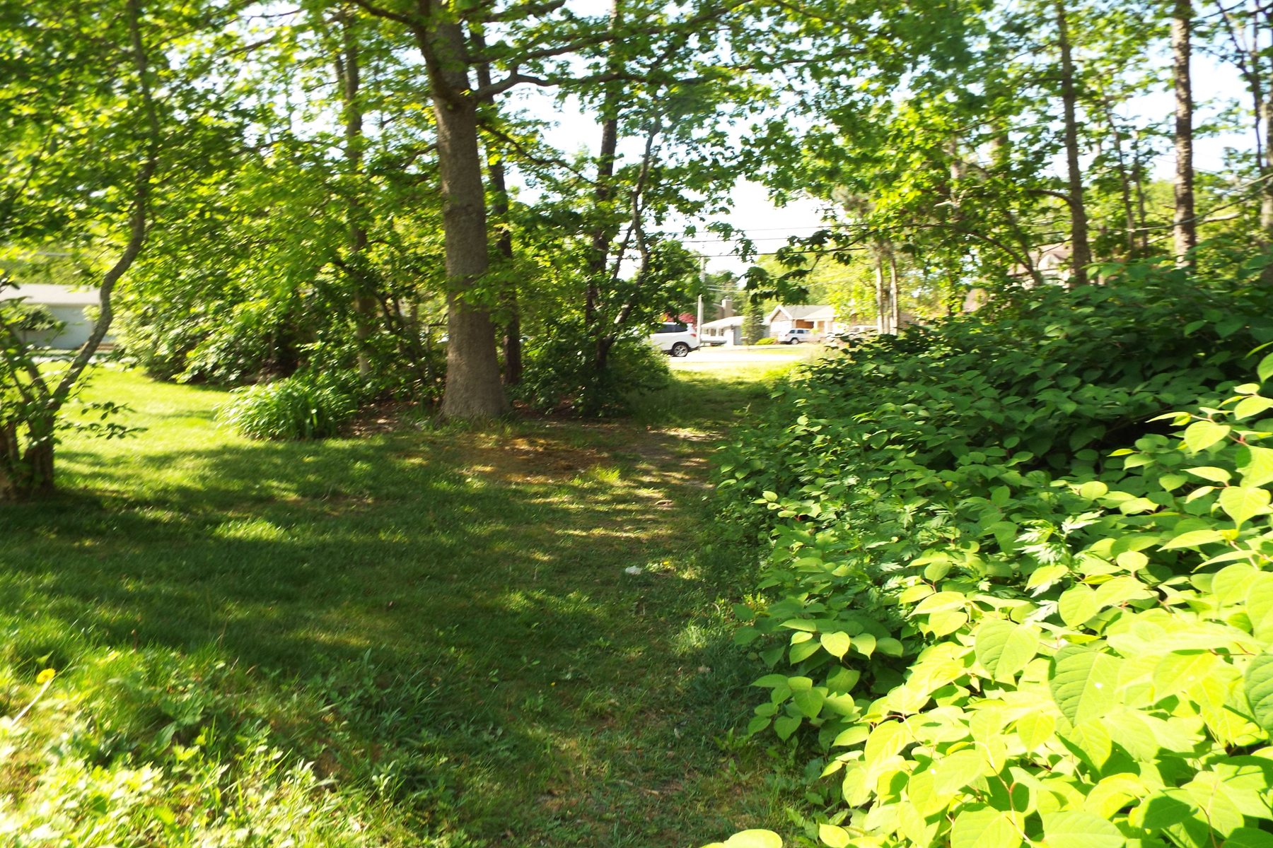 Land for Active at Wooded Lot In Historic Pinewald Section of Bayville 1 Elizabeth Avenue Bayville, New Jersey 08721 United States