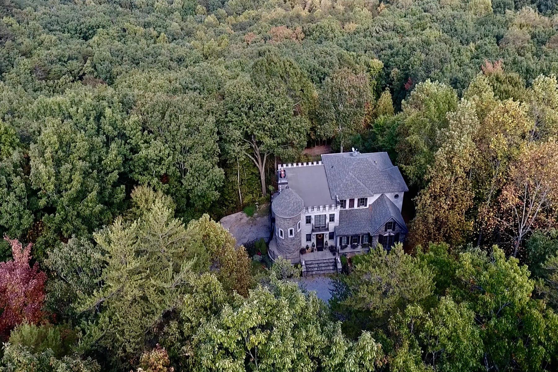 단독 가정 주택 용 매매 에 The Castle At Tally Mountain 951 Firetower Road Jasper, 조지아, 30143 미국