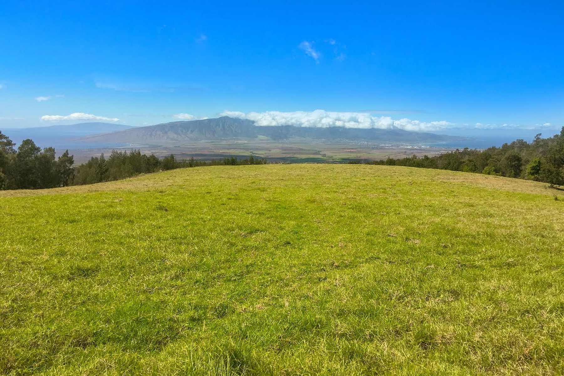 土地 为 销售 在 A Legacy Ranch on the Island of Maui! 15640 Haleakala Highway 库拉, 夏威夷, 96790 美国