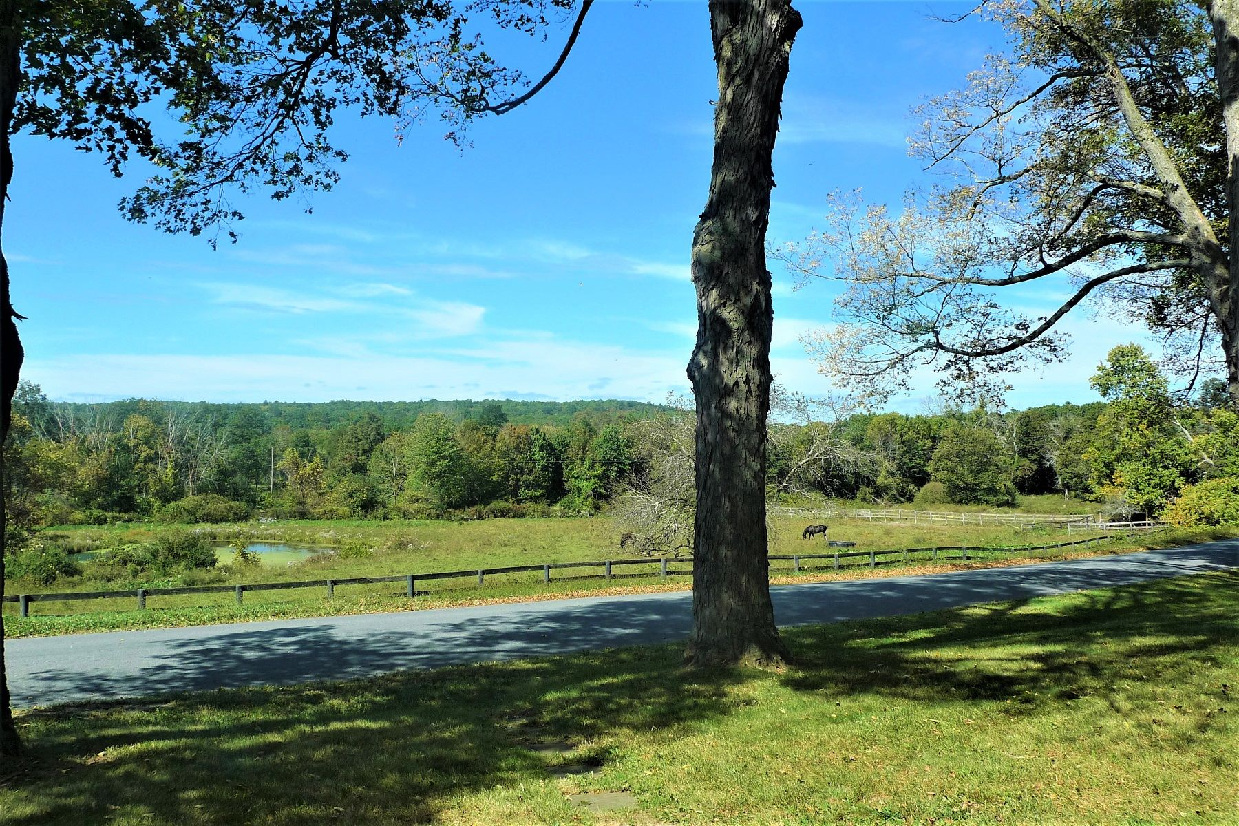 Additional photo for property listing at Browning Road Farmhouse 11 Browning Road Hyde Park, New York 12538 United States