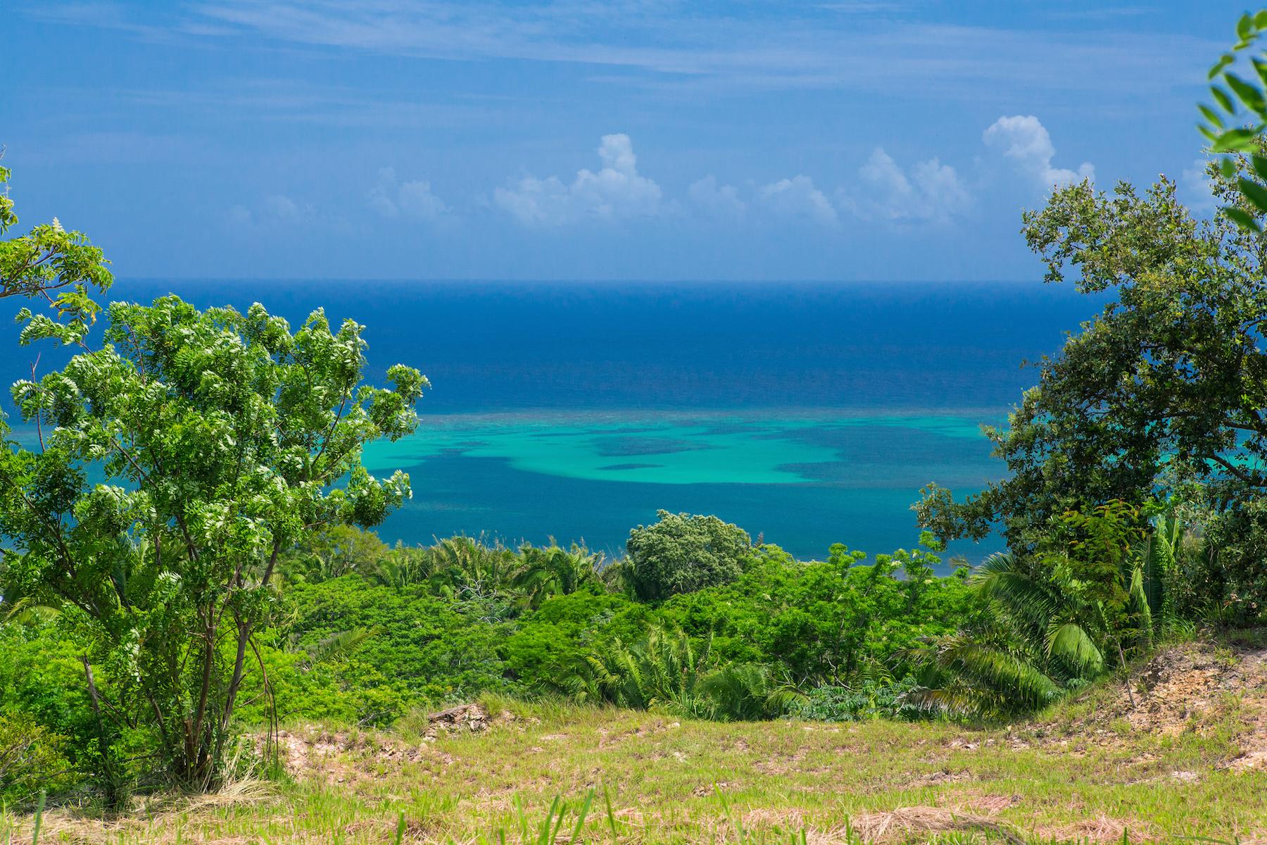 Property 為 出售 在 Crawfish Rock Development Property - 650 Feet Beachfrontage Crawfish Rock Roatan, Bay Islands 34101 Honduras