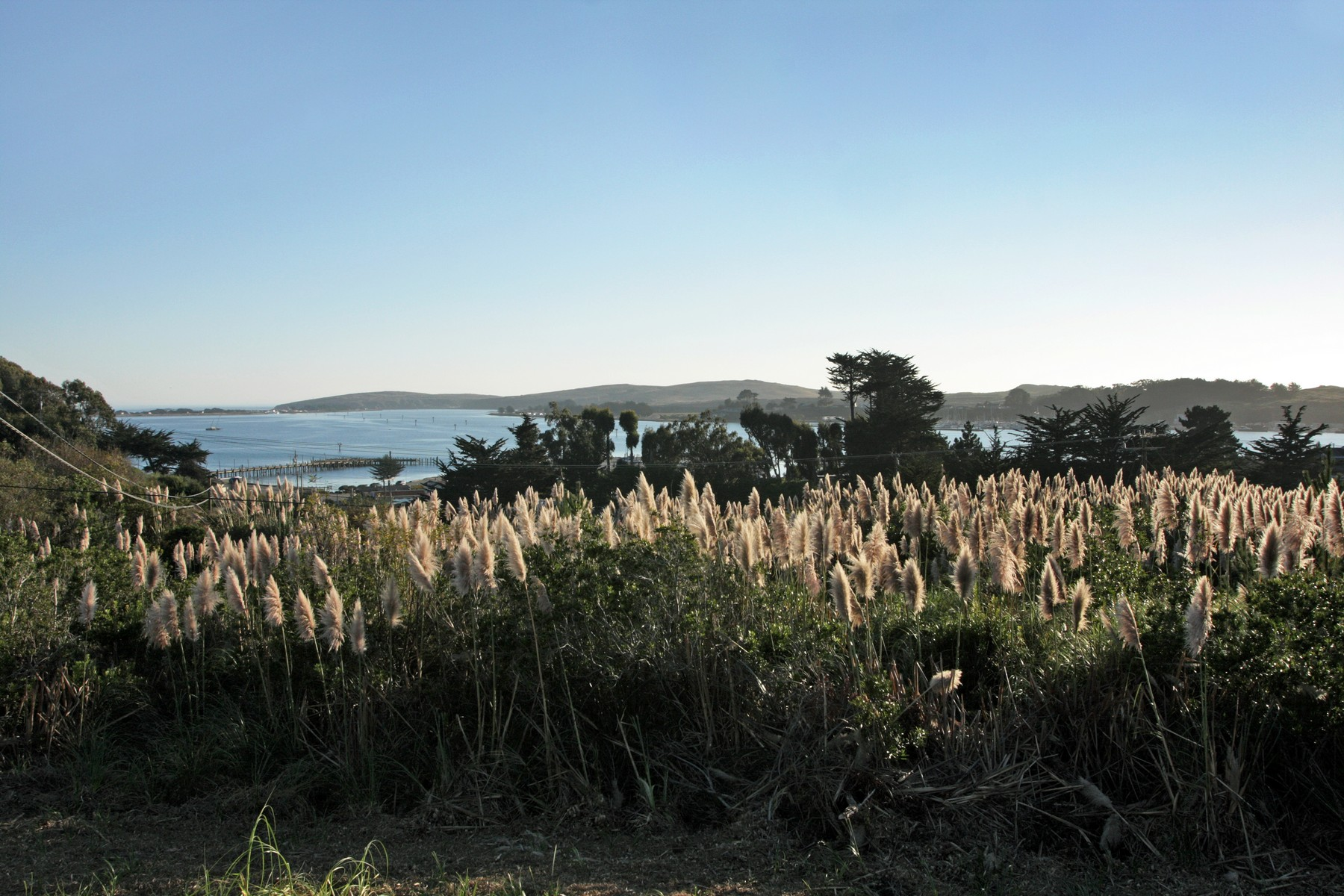 Land for Sale at 1555 Eastshore Road 1555 Eastshore Road Bodega Bay, California 94923 United States