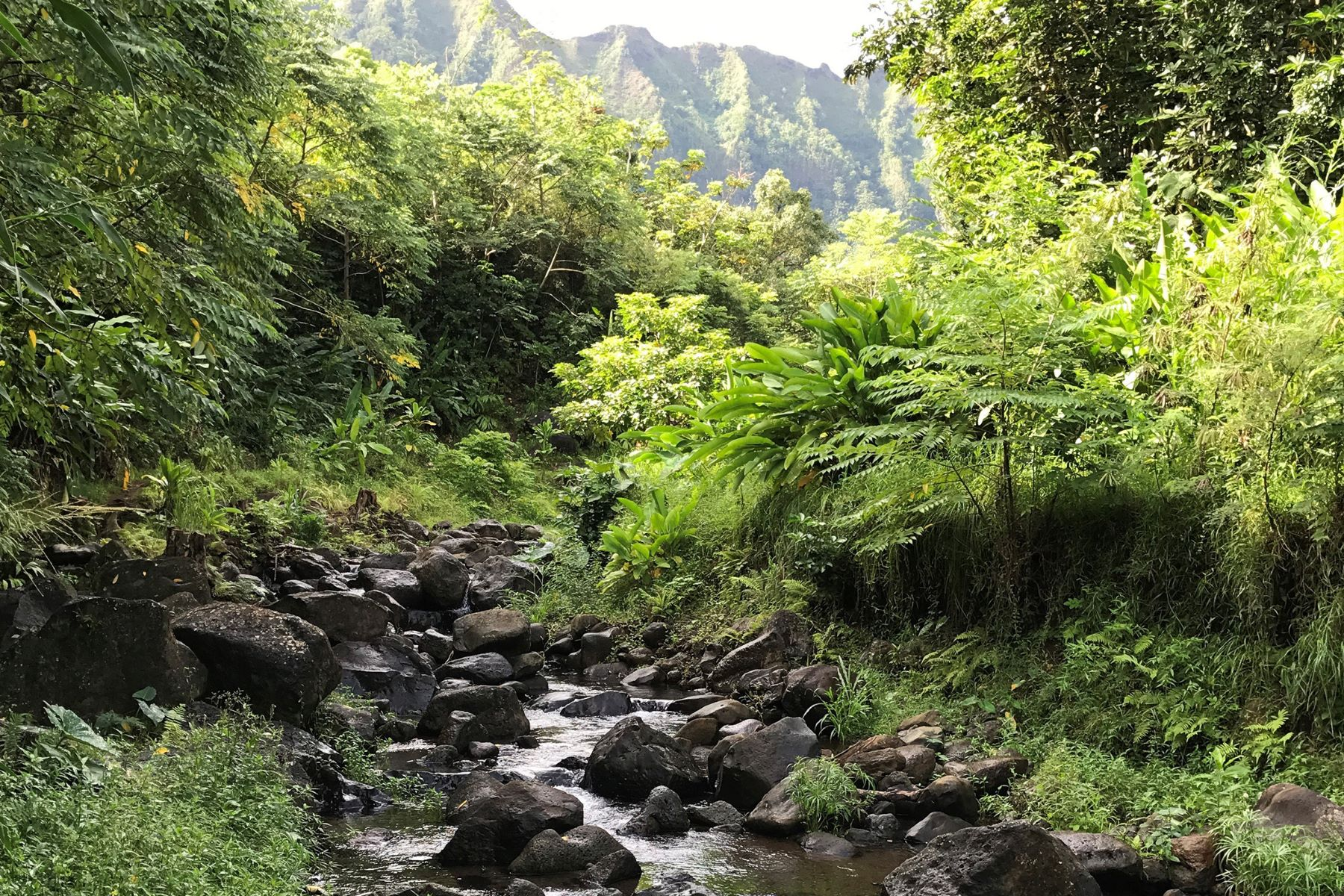 土地 為 出售 在 Private Waterfalls & Ponds 46-403 Haiku Rd Kaneohe, 夏威夷 96744 美國