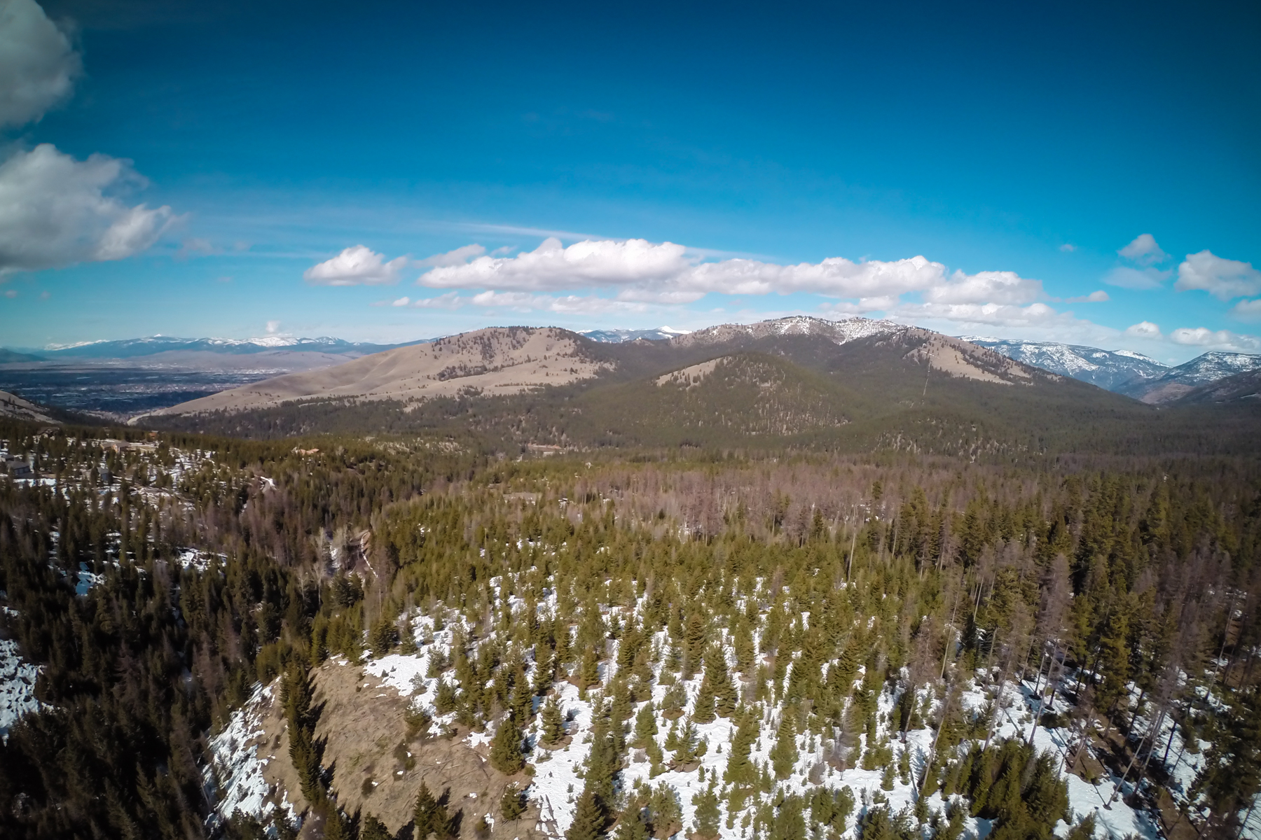 土地,用地 为 销售 在 Nhn Larch Camp Road 米苏拉, 蒙大拿州 59803 美国