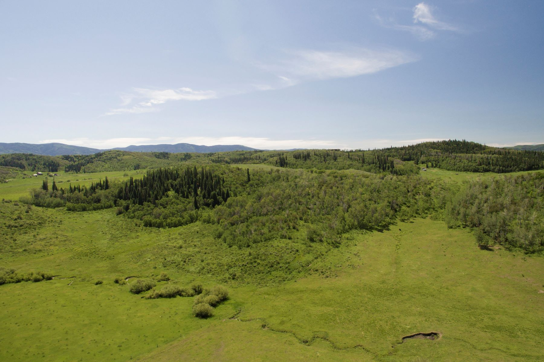 Additional photo for property listing at 120 Acres on County Road 43 TBD RCR 43 Steamboat Springs, Colorado 80487 United States