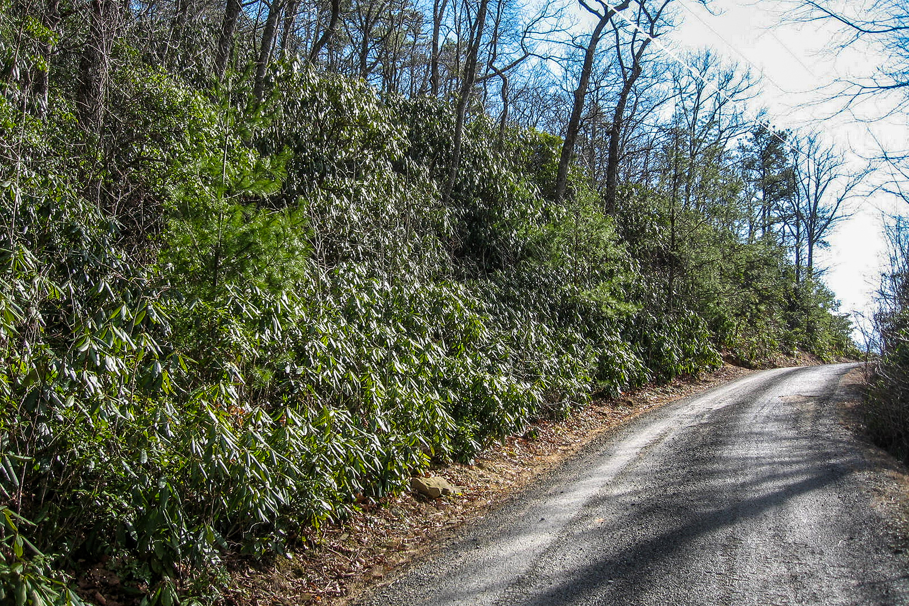 Land for Active at FAIRVIEW FOREST 0000 Rock Springs Road , 10 Fairview, North Carolina 28730 United States