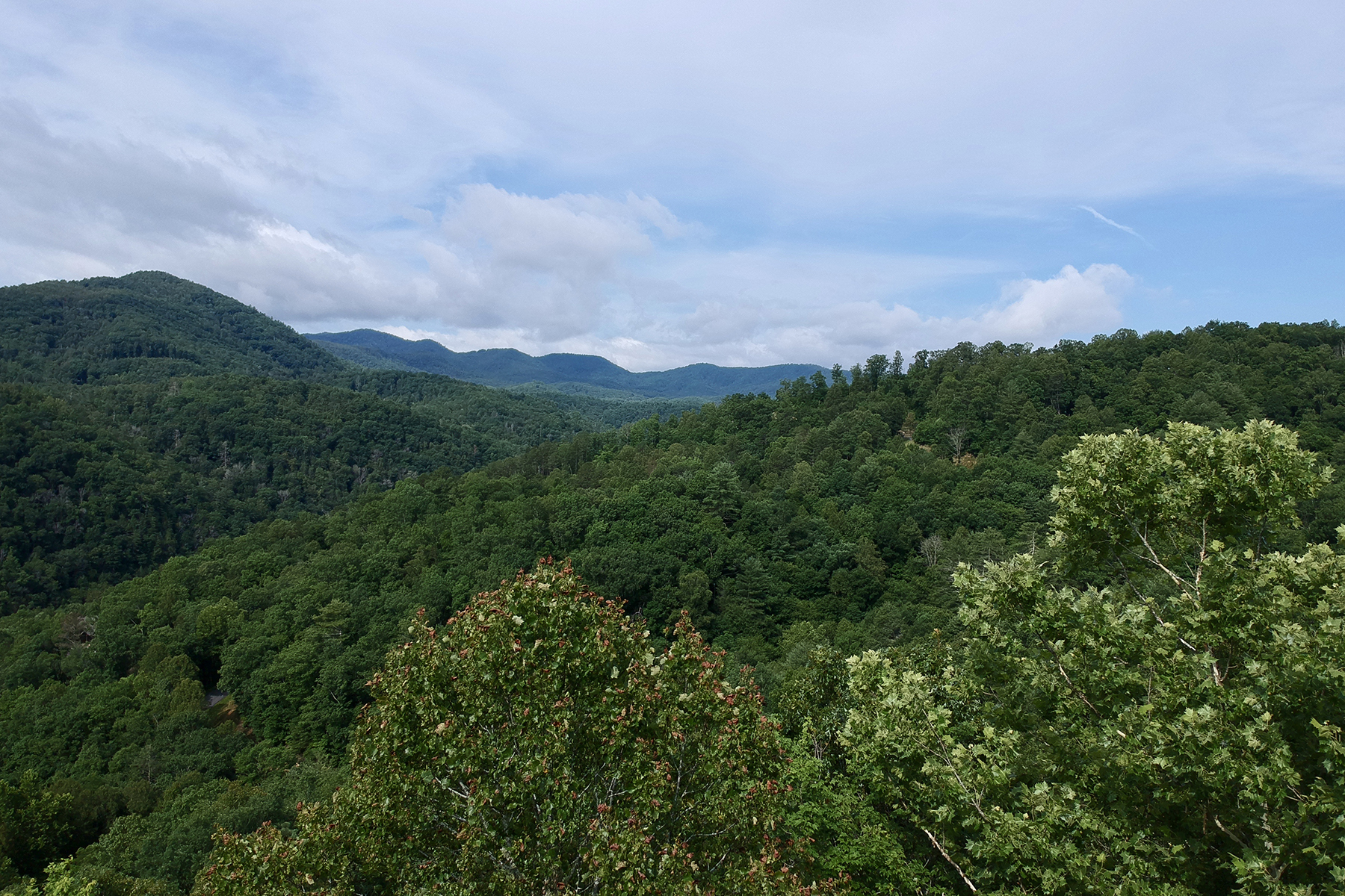 Land for Sale at FRENCH BROAD CROSSING 677 White Water Way , 30, Marshall, North Carolina 28753 United States
