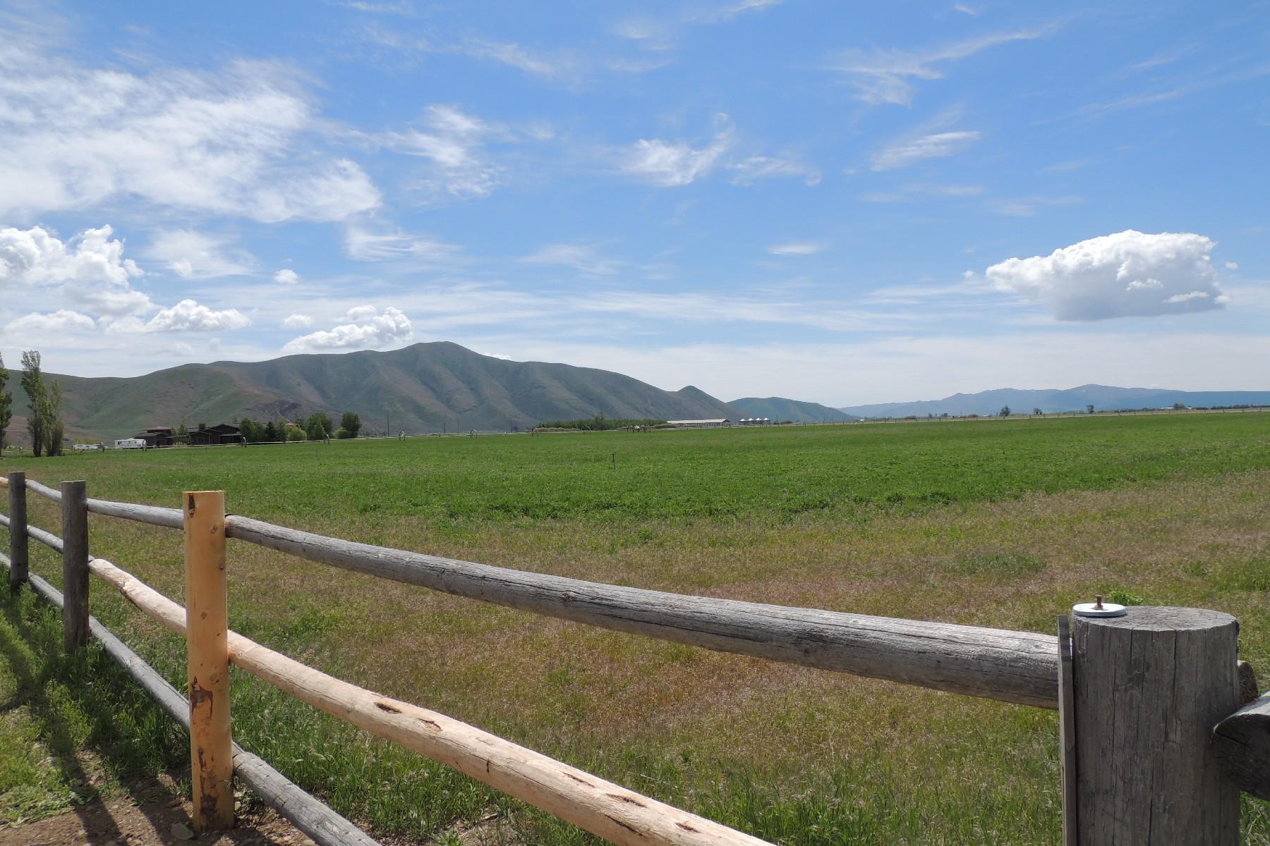 Terrain pour l Vente à Space, Views, and So Much More 110 Eastfield Lane Bellevue, Idaho, 83313 États-Unis