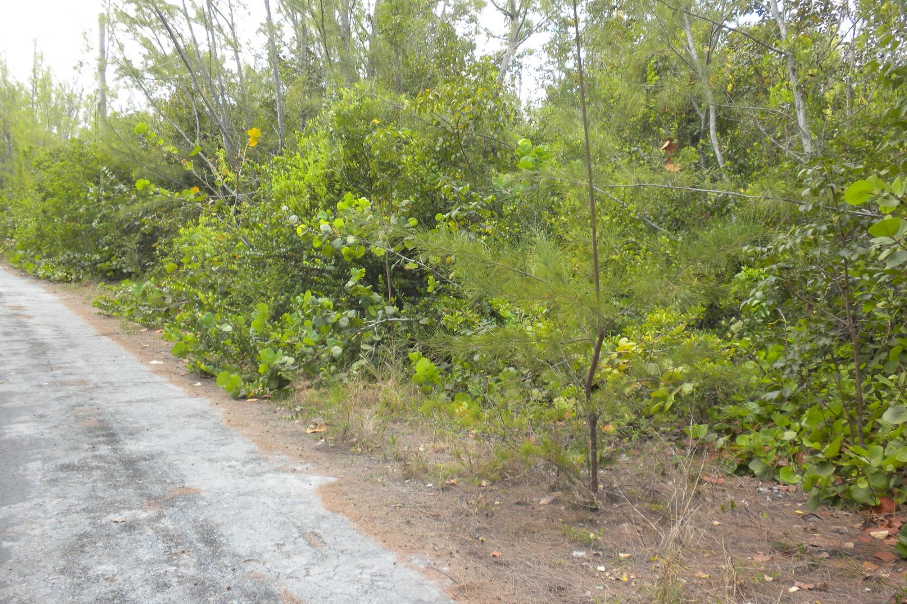 Land for Sale at Lot 35, Block 2 Treasure Cay, Abaco Bahamas