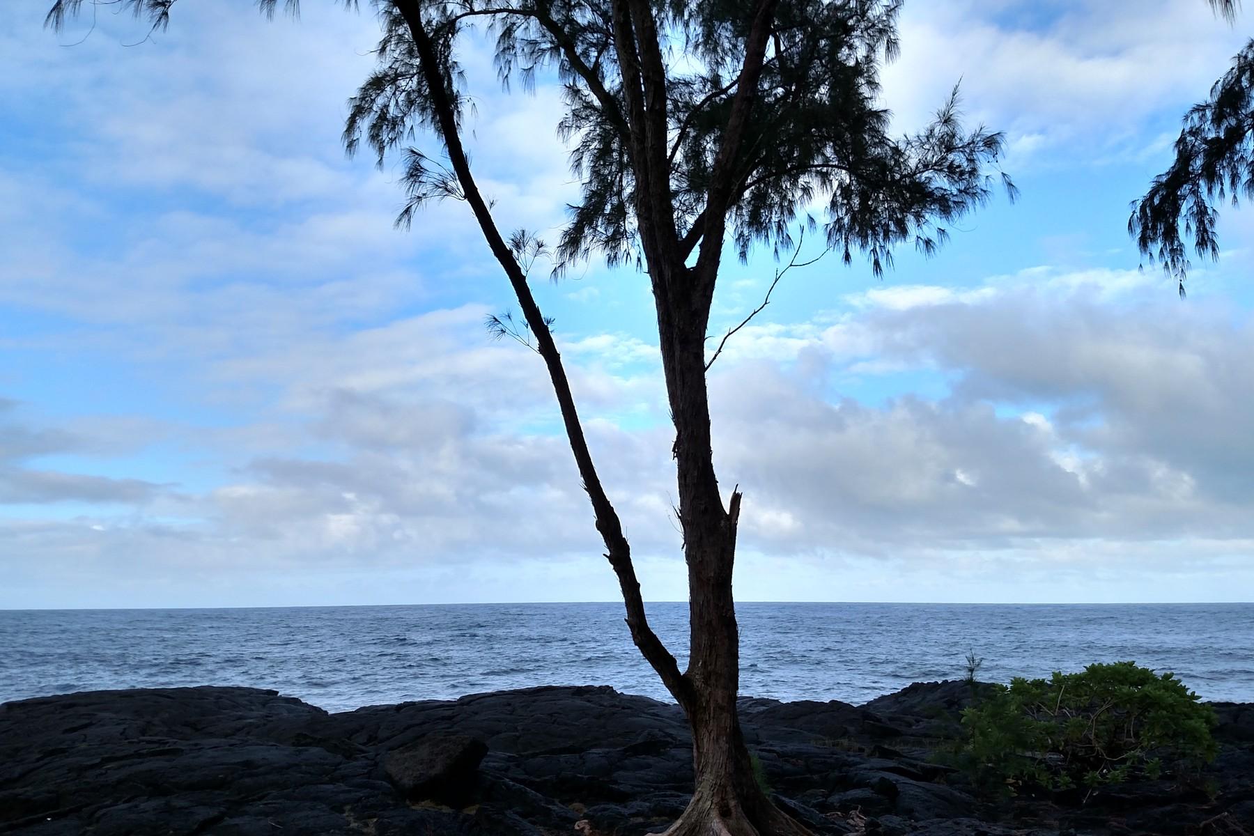 Terreno por un Venta en Hawaiian Paradise Park Ala Heiau Ave Keaau, Hawaii 96749 Estados Unidos