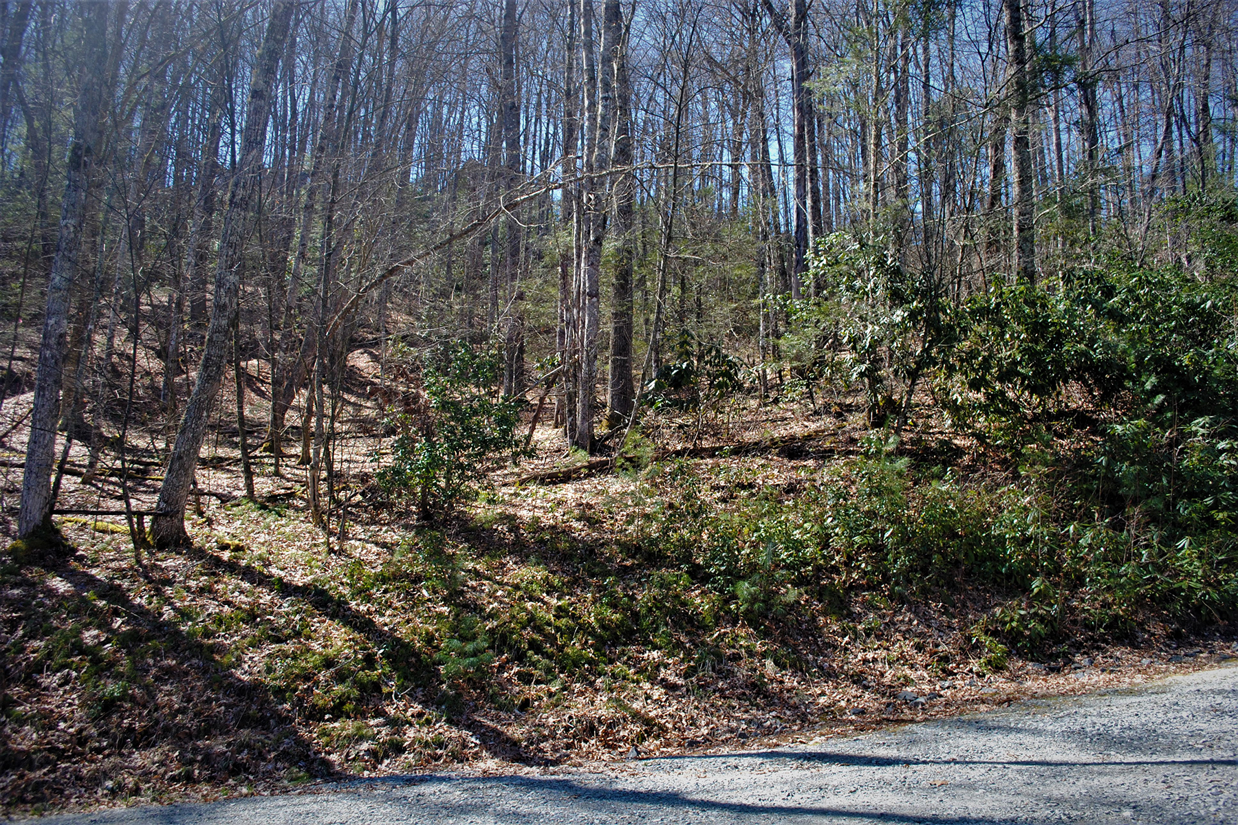 Land for Sale at STONECREST - FLEETWOOD Lot 36 Maple Leaf Rd Fleetwood, North Carolina 28626 United States