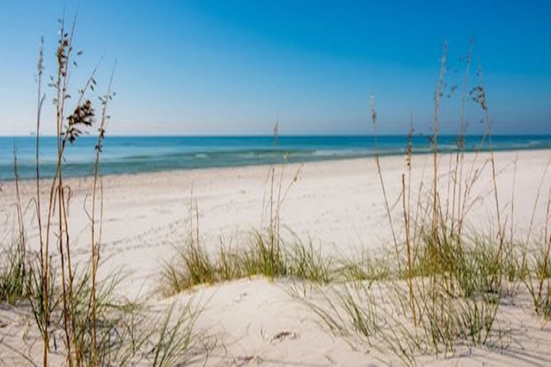 Земля для того Продажа на Perdido Key Gulf Front Lot 29070 Perdido Beach Boulevard, Orange Beach, Алабама, 36561 Соединенные Штаты